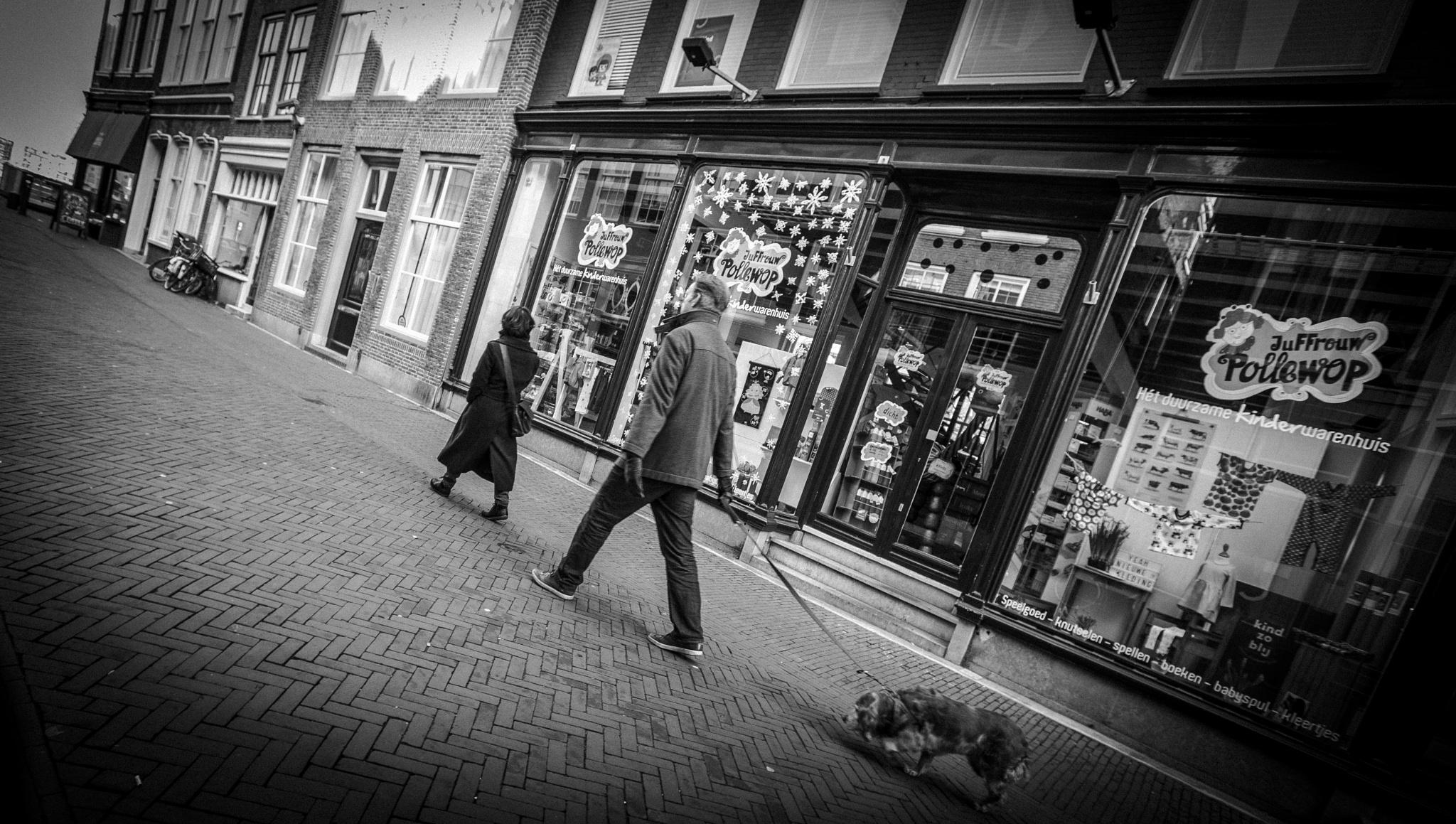 Walking the DOG by ad.kesteloo