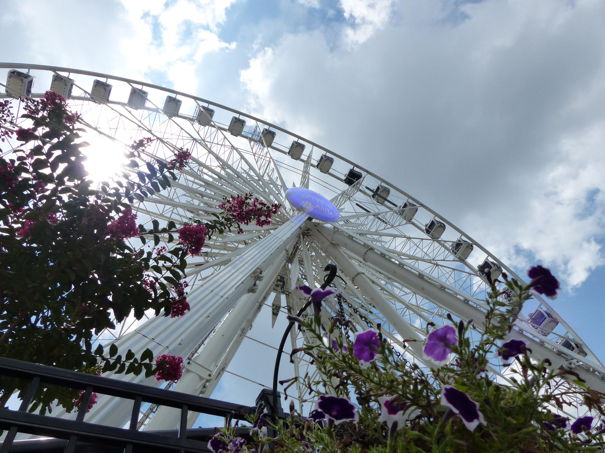 Ferris wheel, Olympia Parc, Atlanta by Lars M.