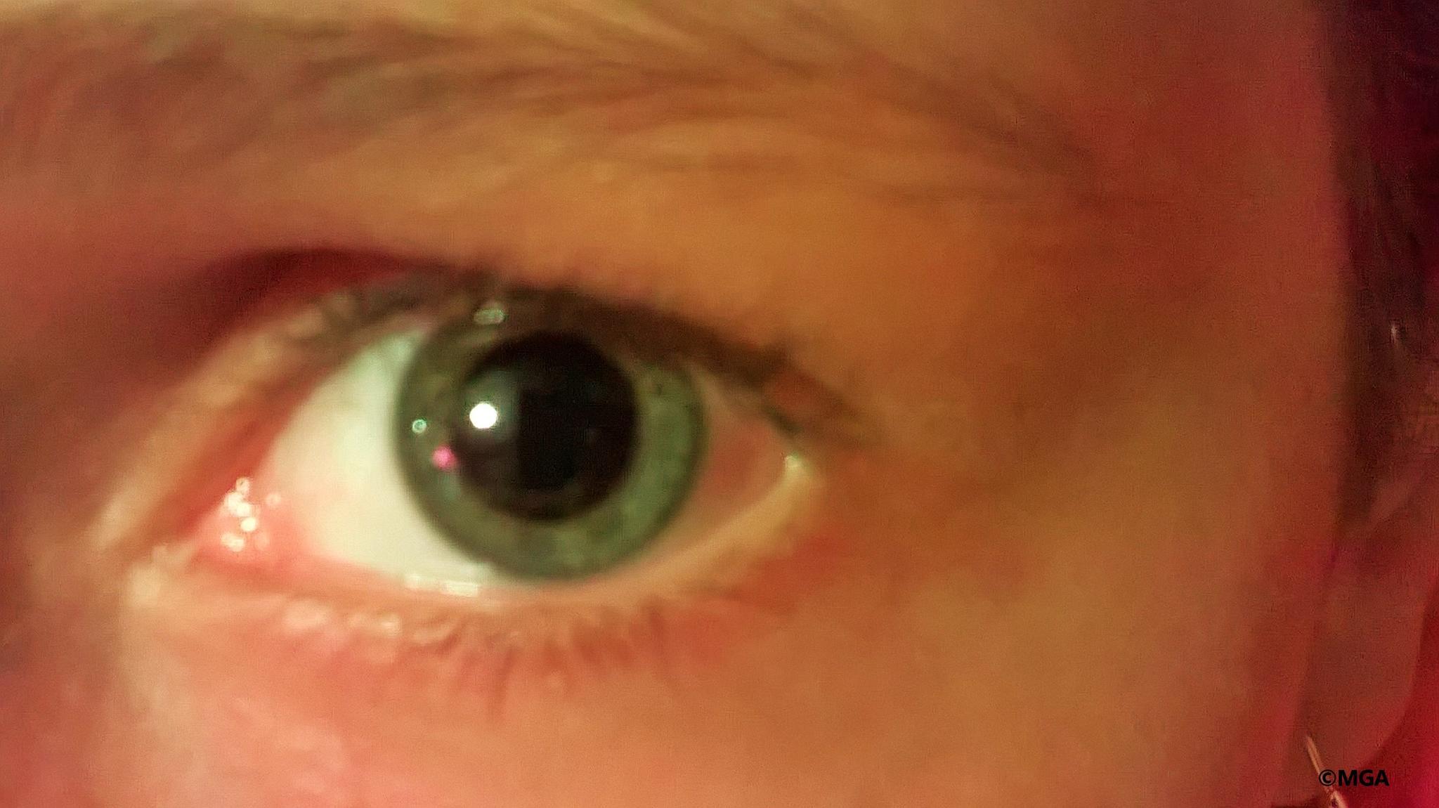eye #1  by Mahnaz & Yelda