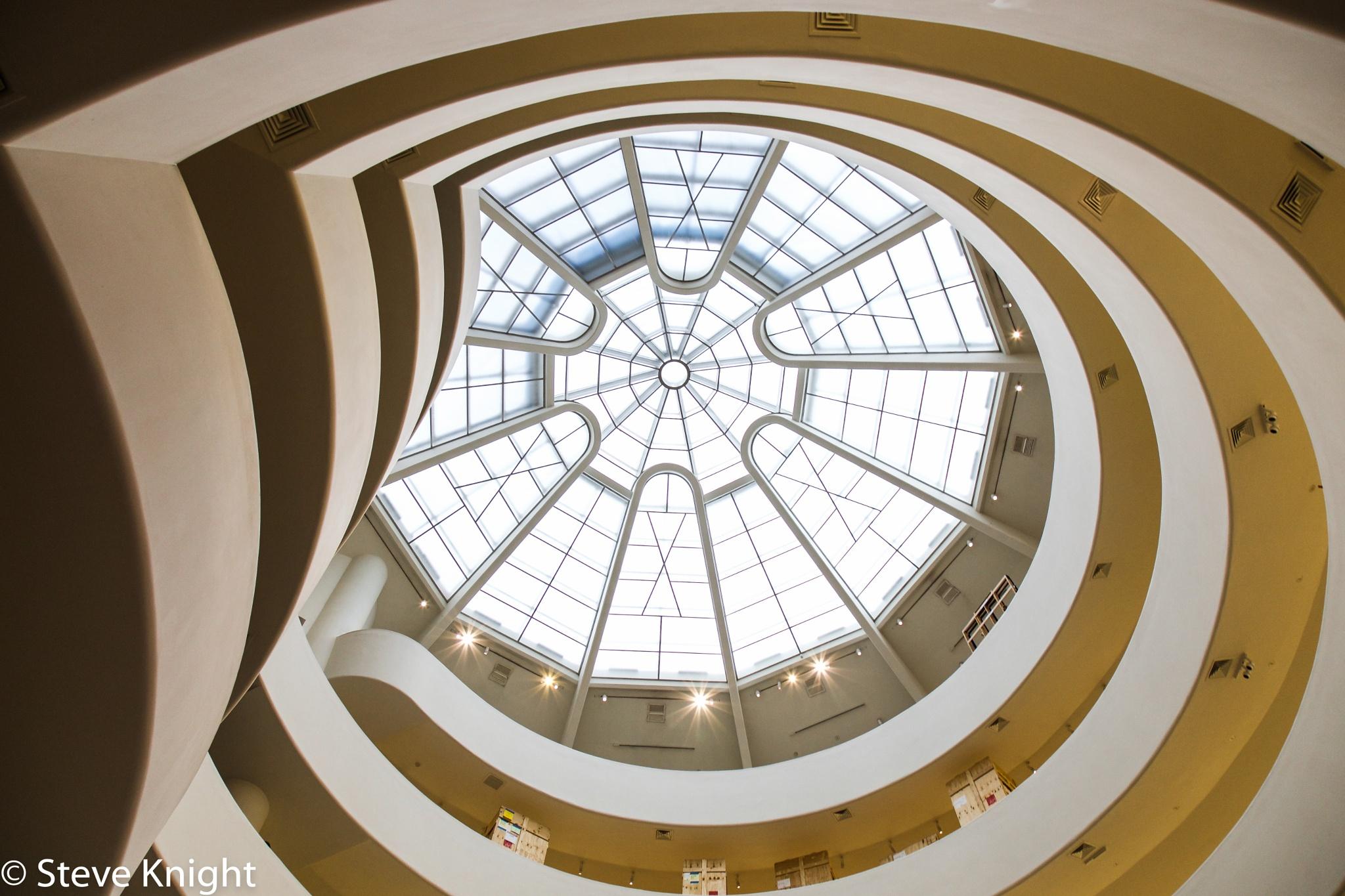 The Guggenheim by Steve K
