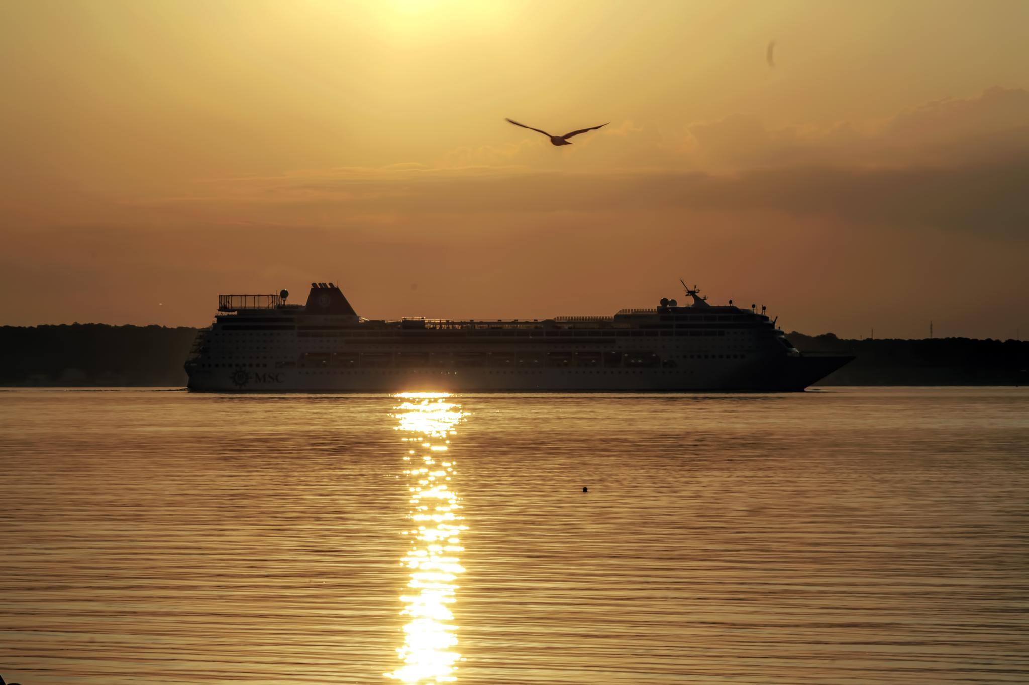 MSC Sinfonia in the morning light by M. Loeth