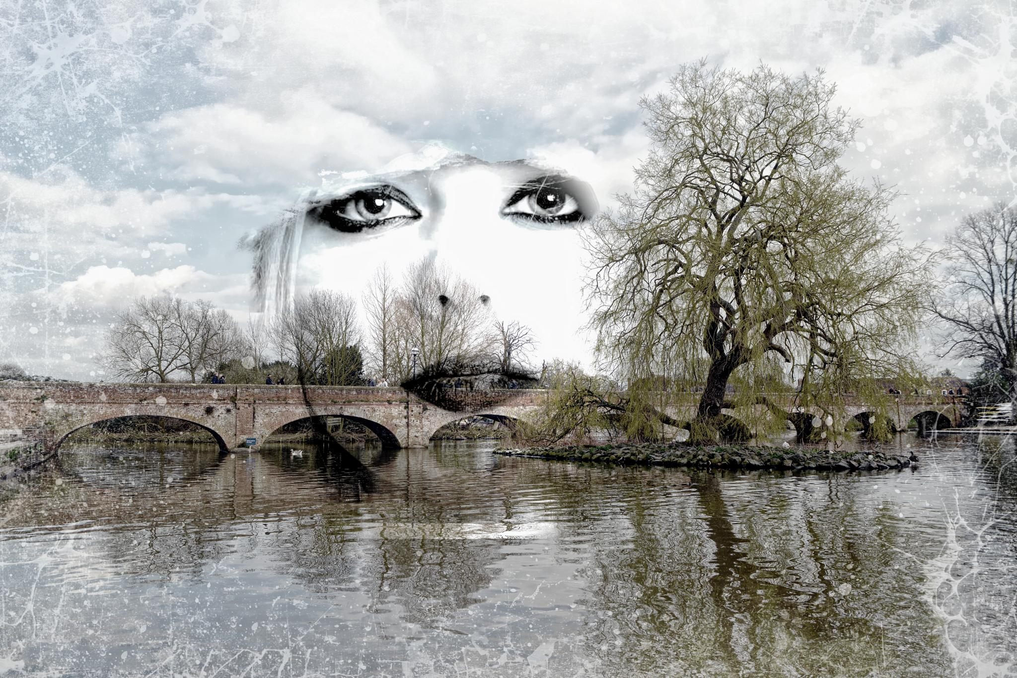 the bridge by kathleendevai