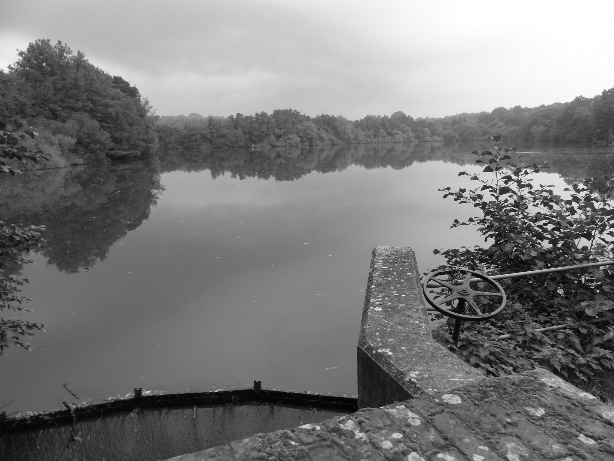 #Lake #Balcombe #WestSussex #BlackAndWhite by Malc Thomason