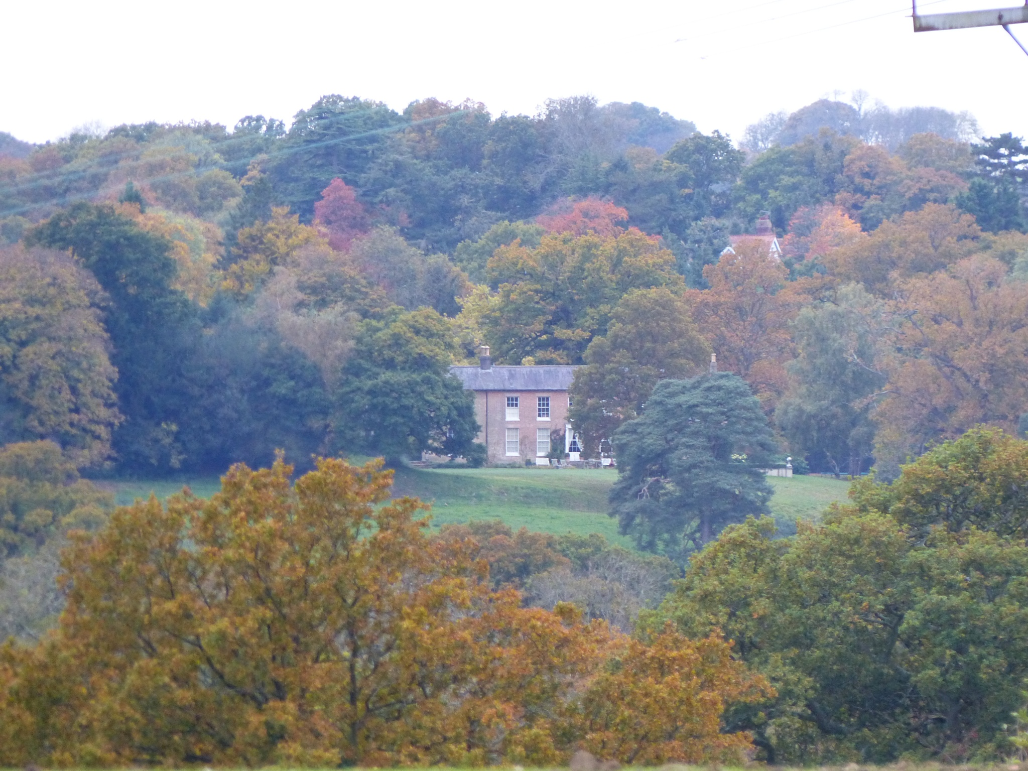 #Autumn Colours #Balcombe #WestSussex by Malc Thomason