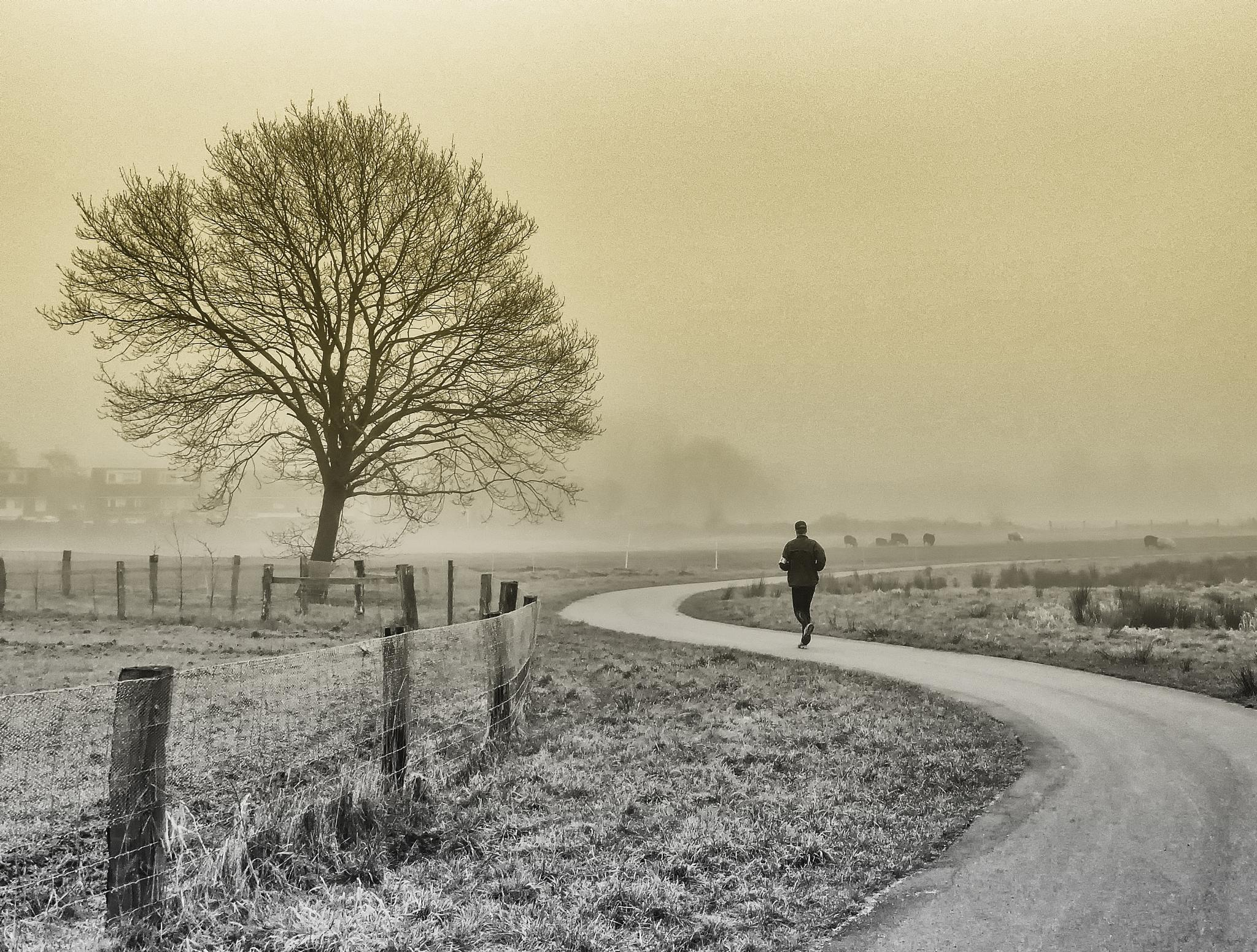 Jogger by FranklinB