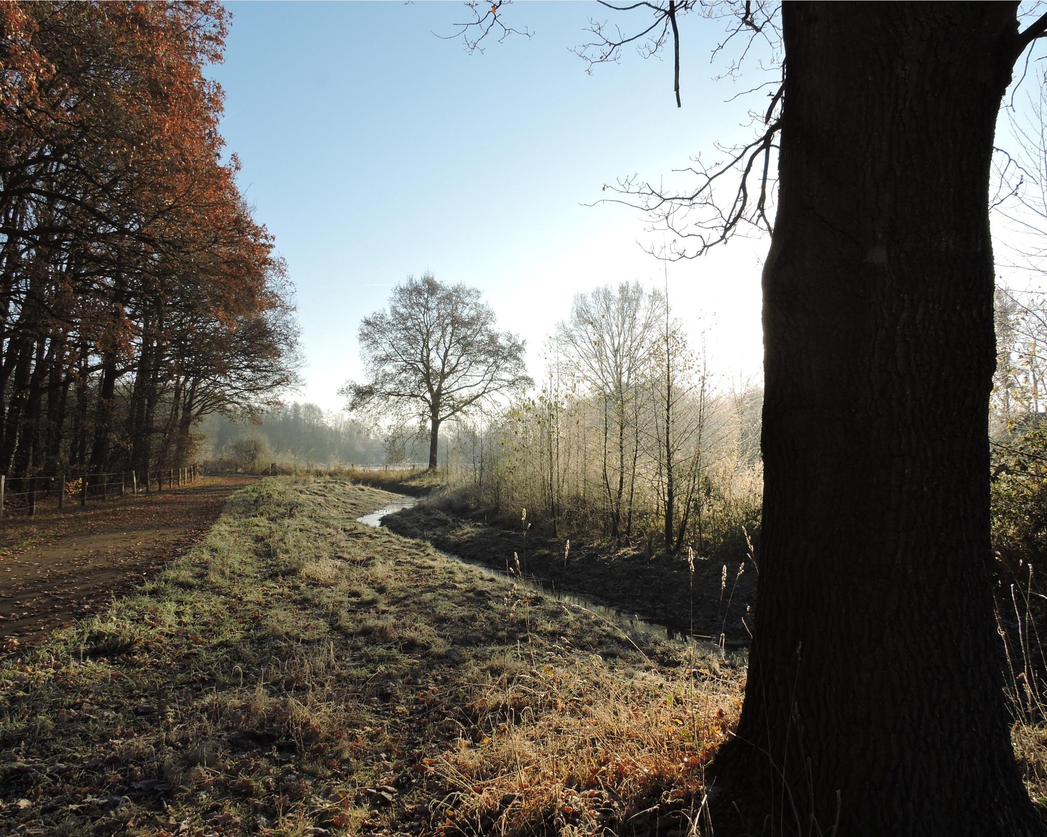 Beautiful Twente by FranklinB
