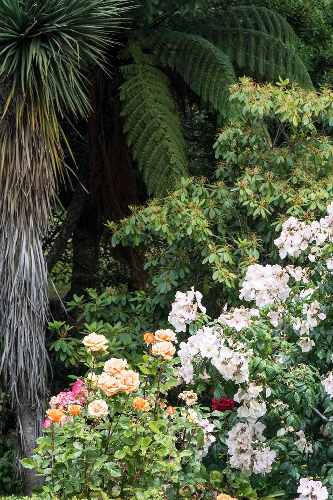 Glenfalloch Gardens by TerraEncounters