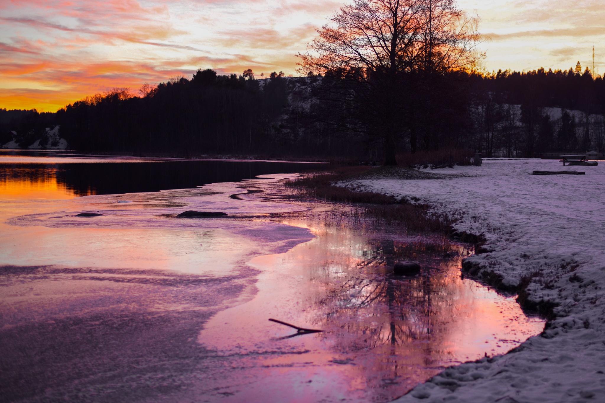 Purple Ice by Ole Morten Eyra