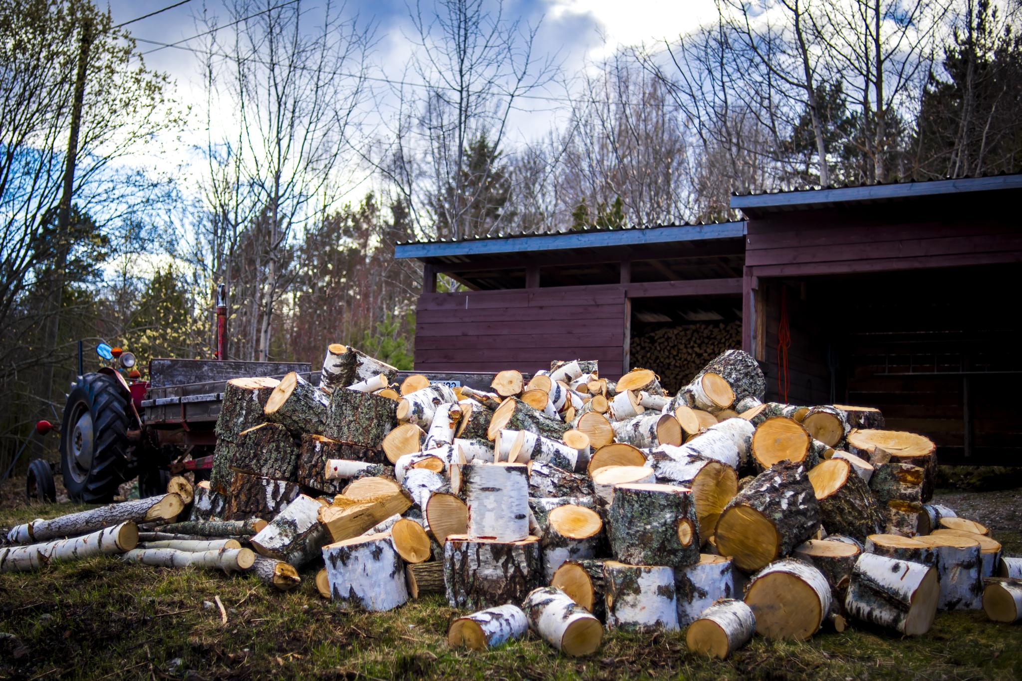 Finding peace in Wood by Ole Morten Eyra