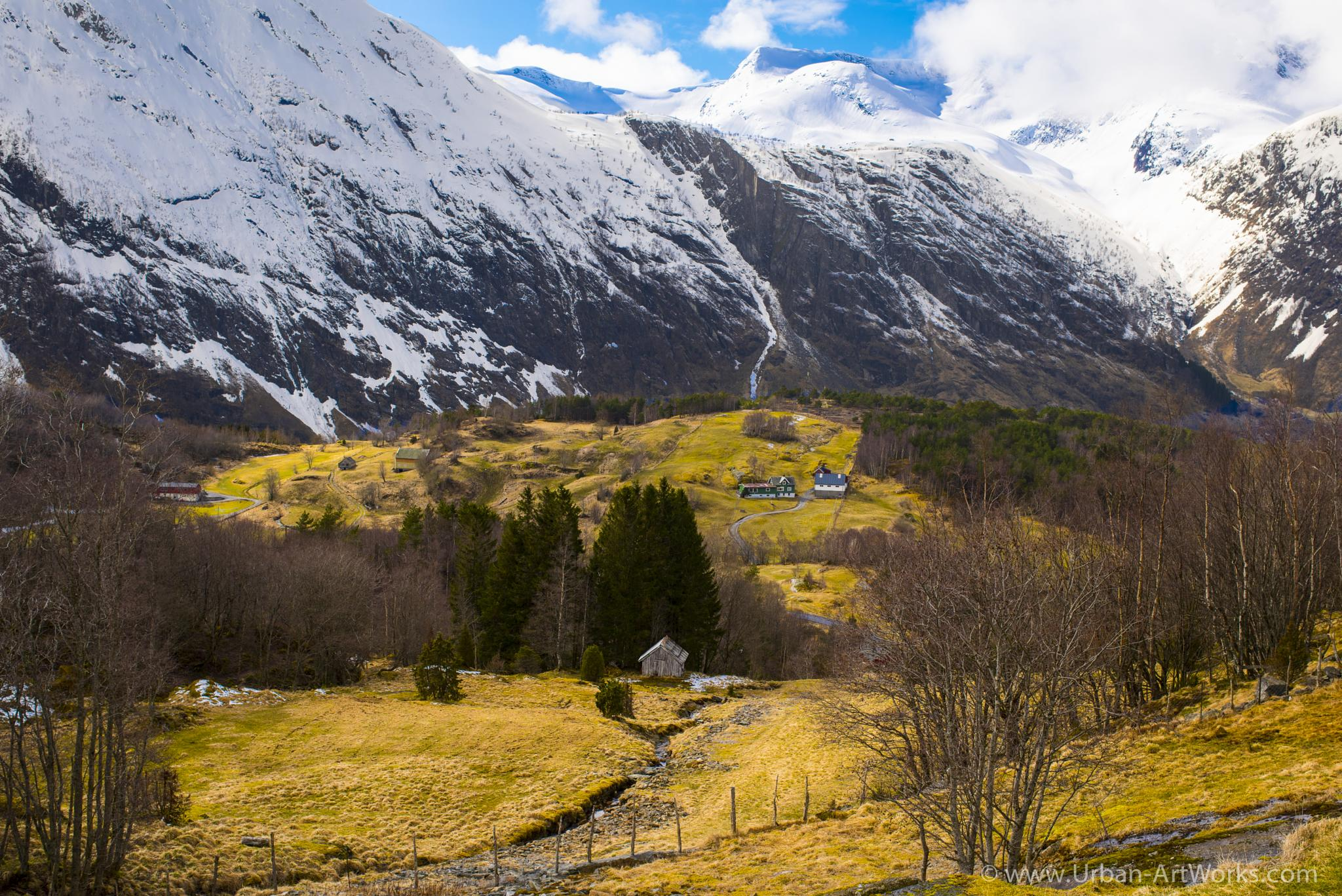 Early Spring in a harsh environment by Ole Morten Eyra