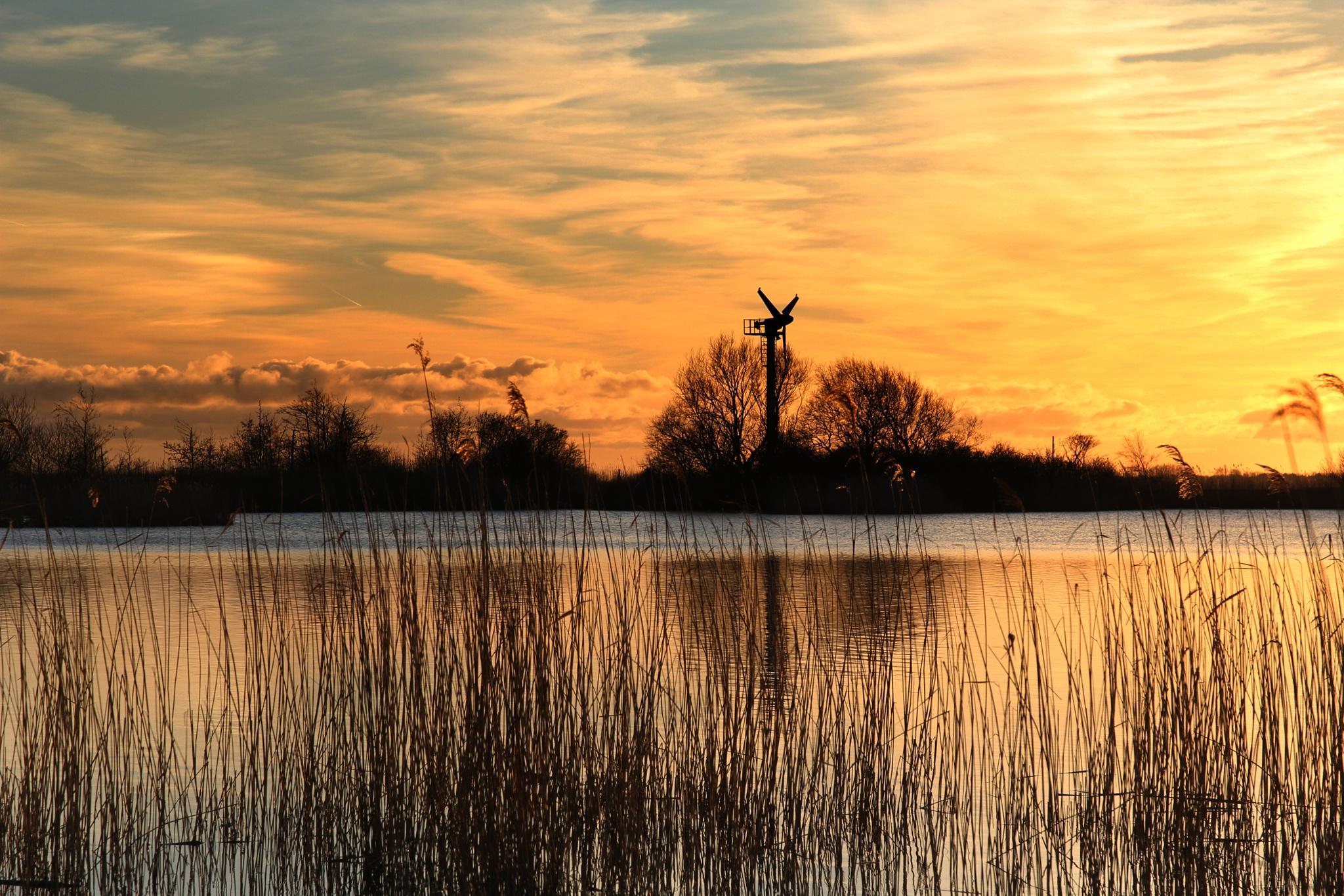 Lauwersoog Holland by Jan Henk