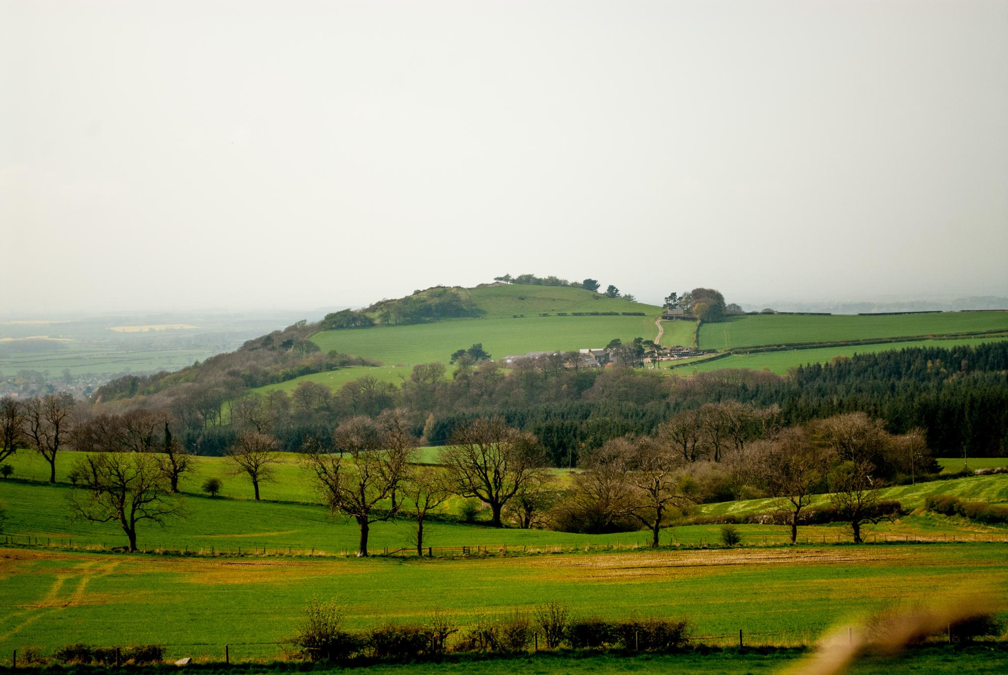A view from a hill. by NatureGirl