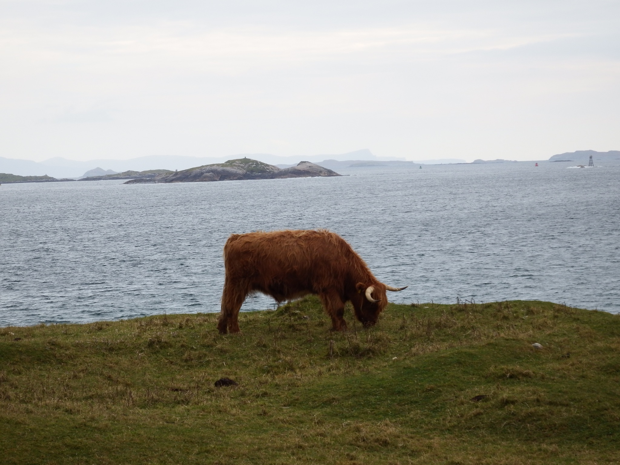 sound of harris by kenneth campbell