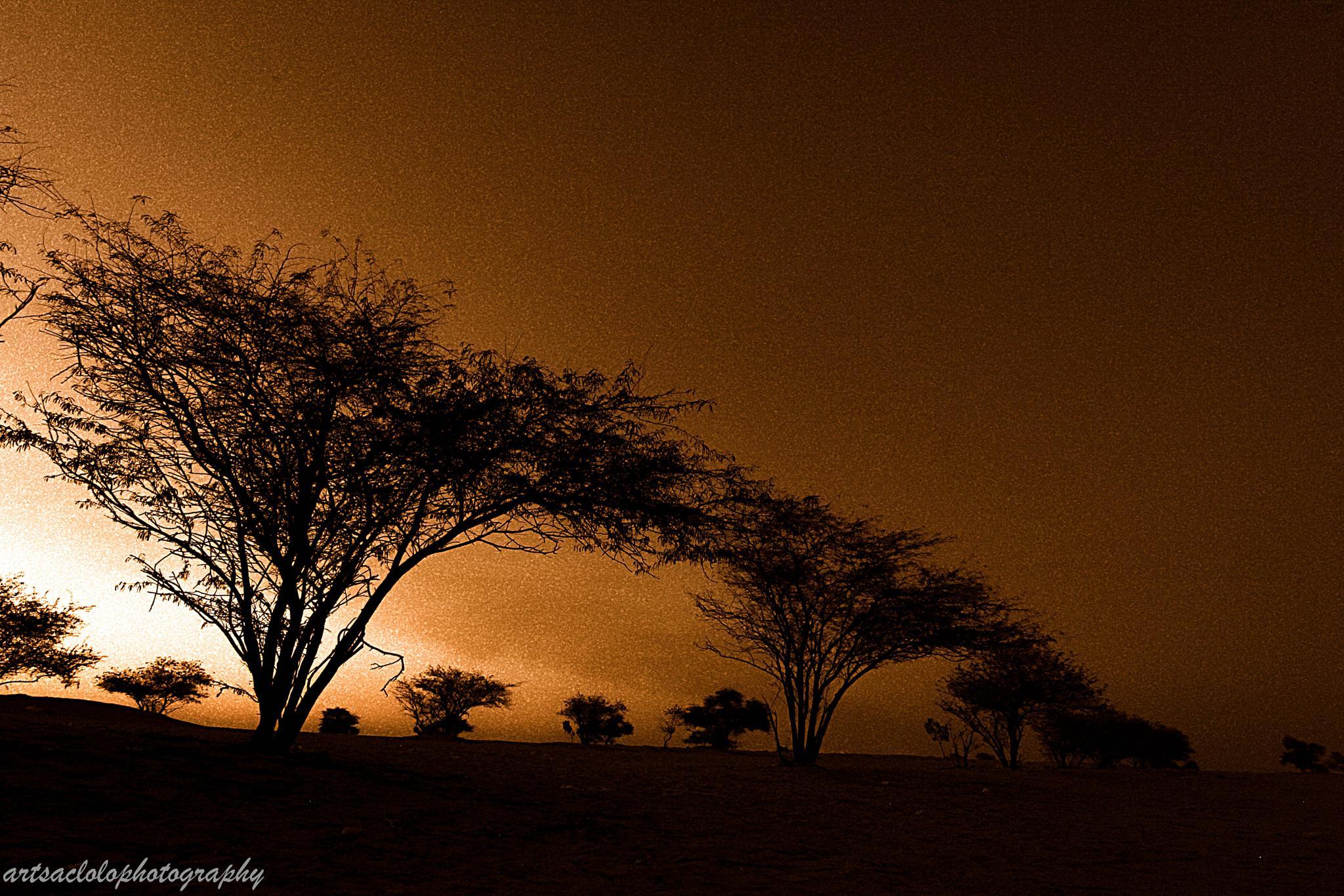 DESSERT SUNSET by arthurlsaclolo