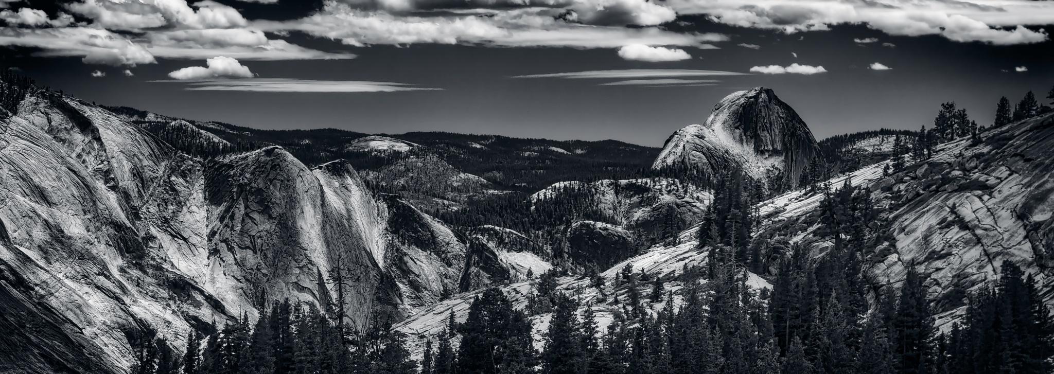 Rough Terrain by DamianBaker