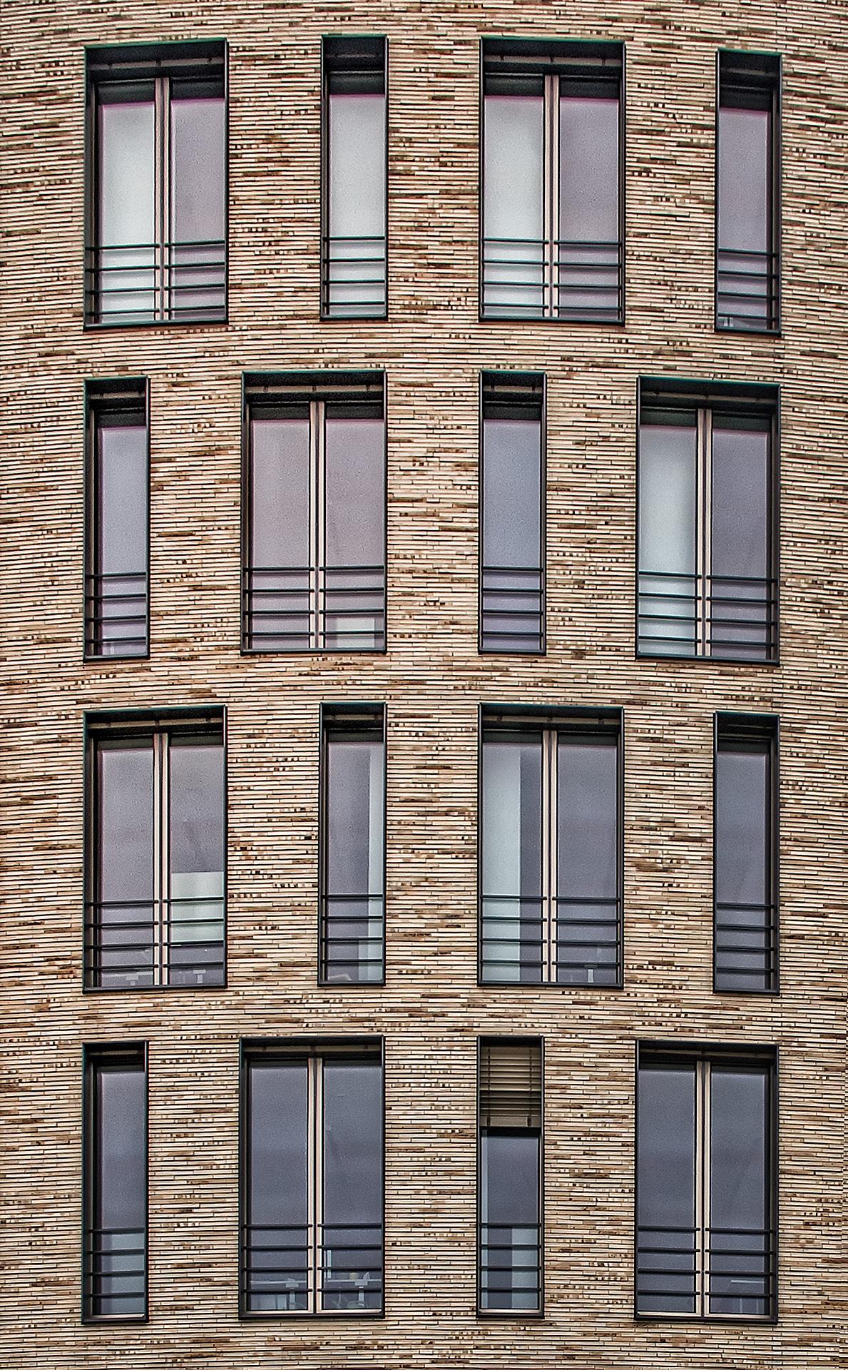 windows by Leo Walter