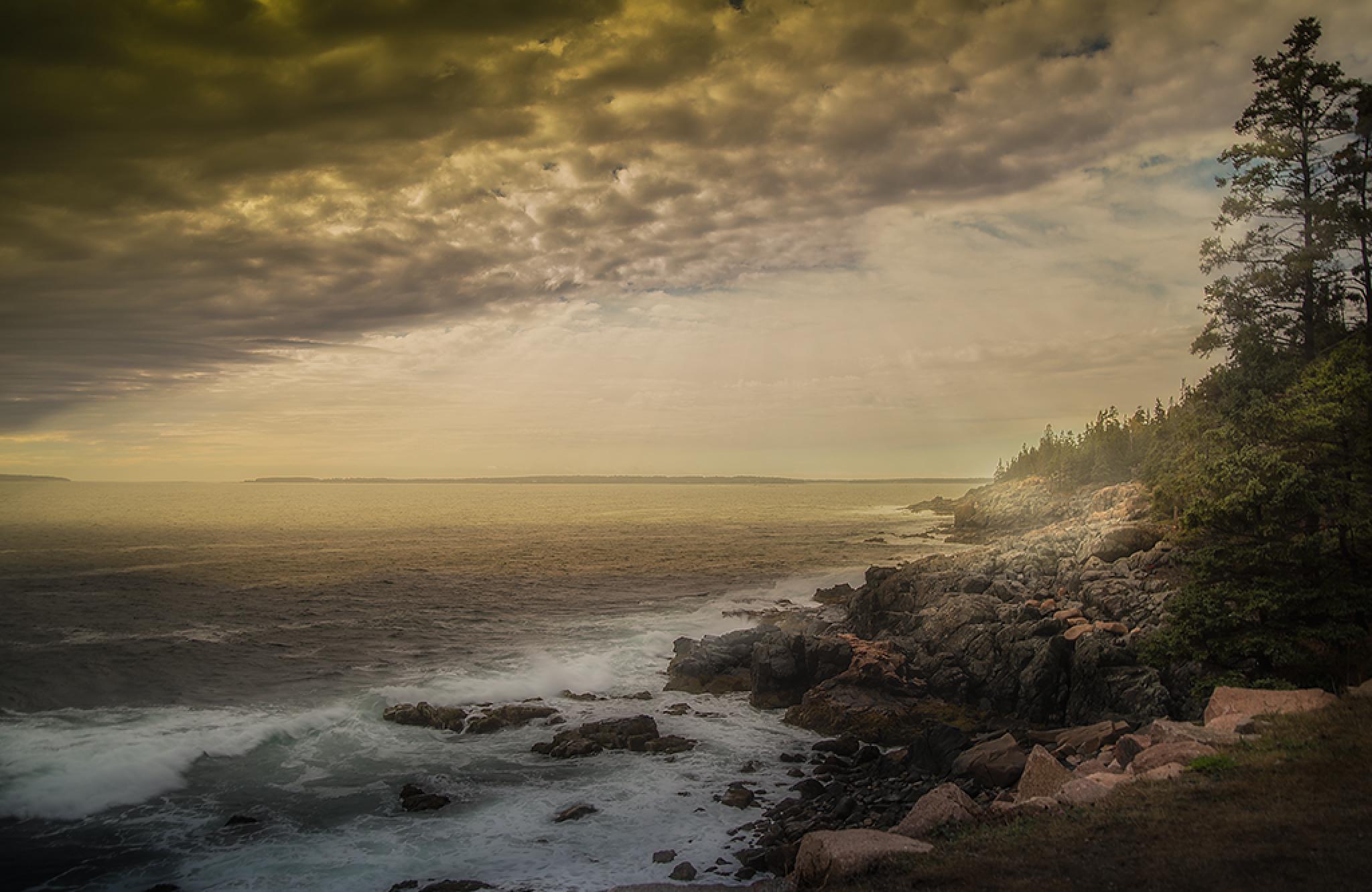 Coastline by Leo Walter