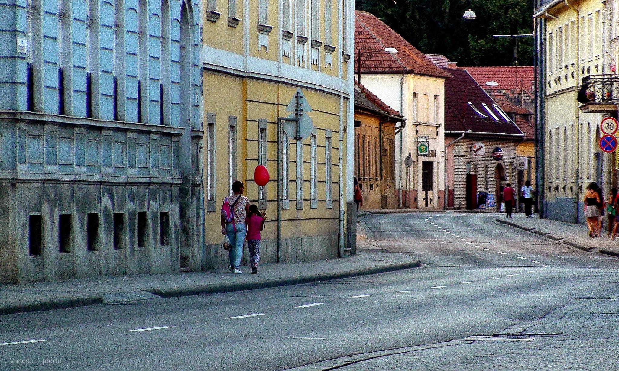 In my street. - #streetcontest  by vancsaierzsebet.goraczjozsefne