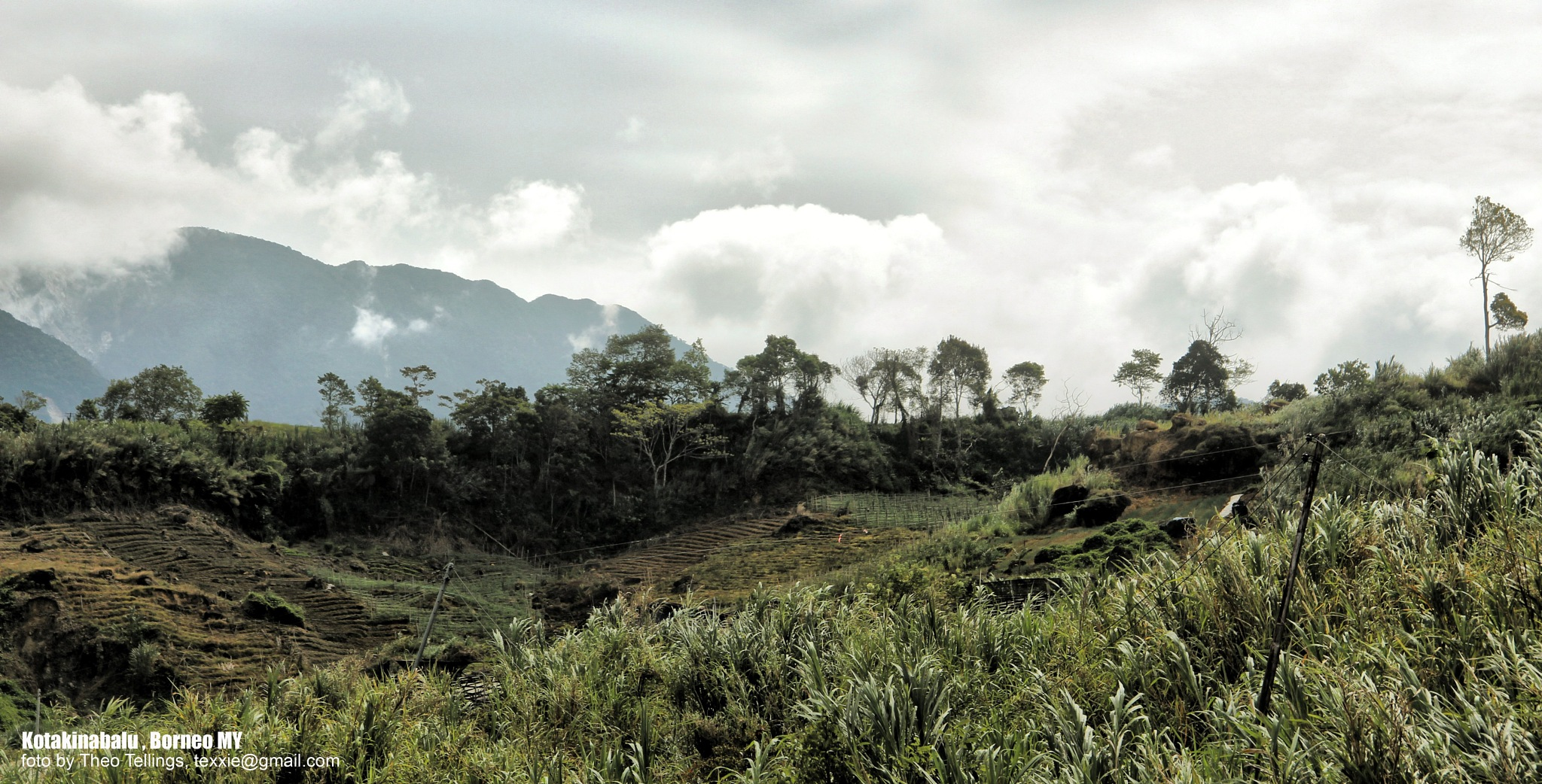 Borneo by Theo Tellings