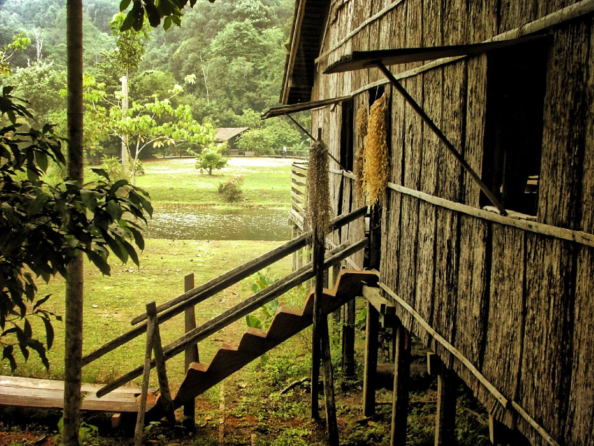 Longhouse Borneo Sarawak East Malasya  by Theo Tellings