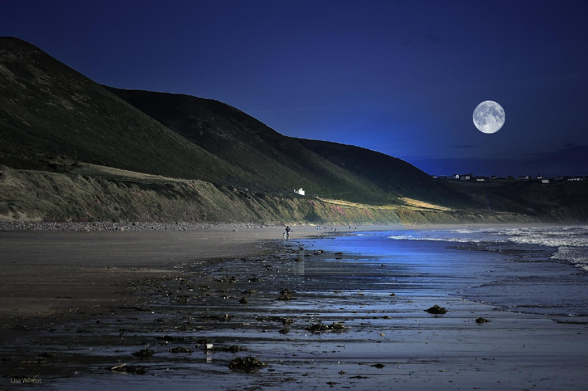 2014-Supermoon At The Gower by Lisa Wilmot