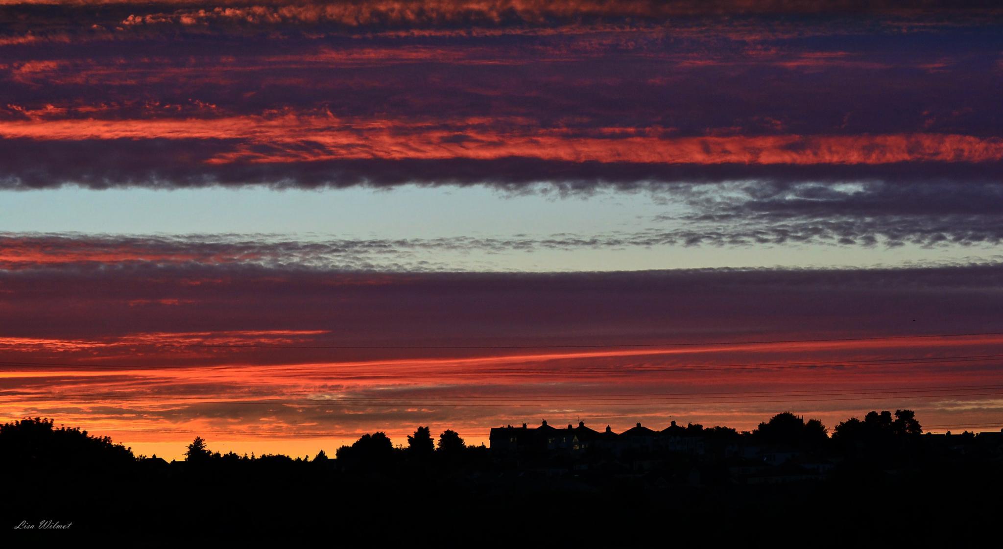 Vivid Sunset by Lisa Wilmot