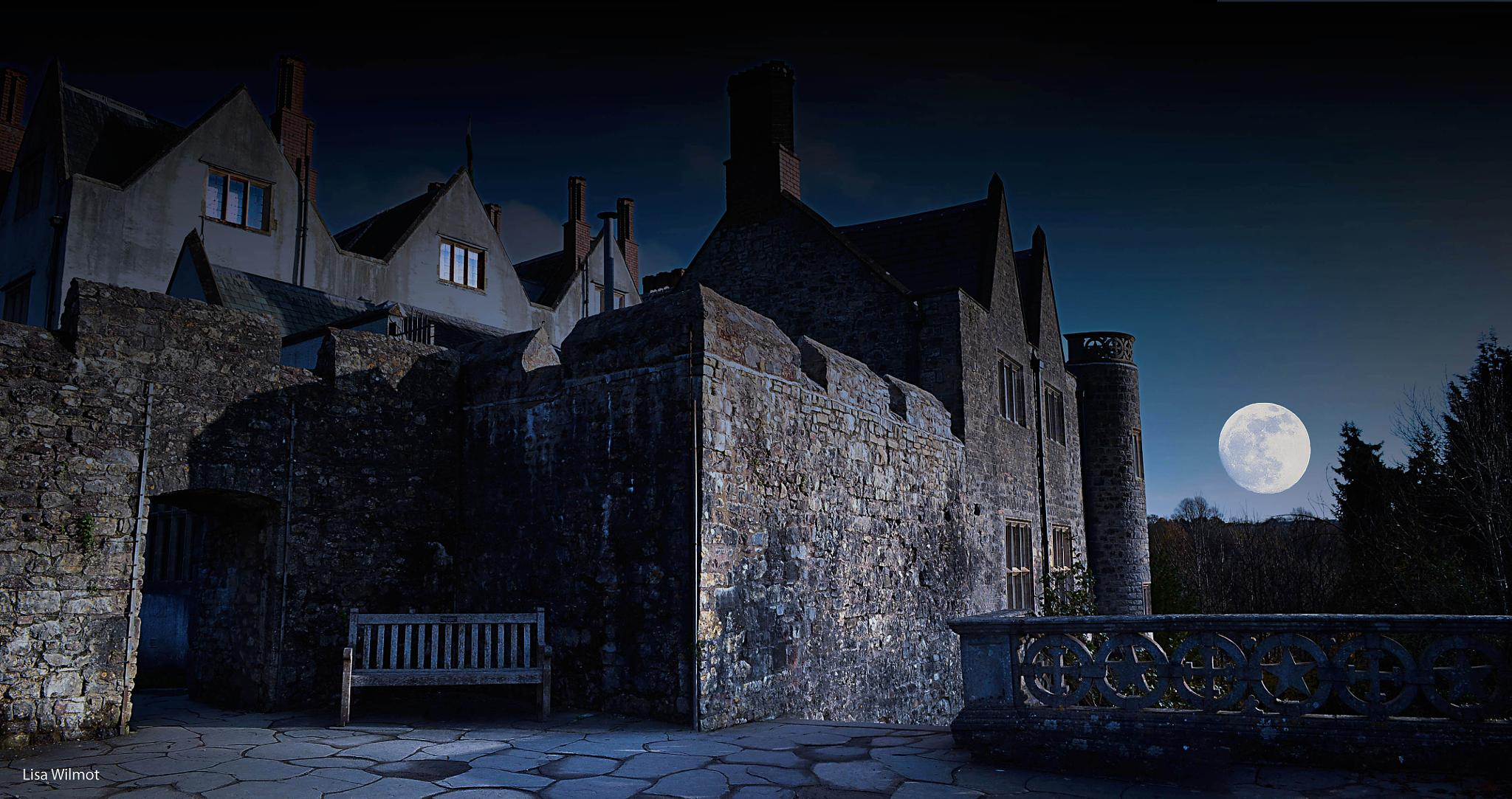 Super moon at the Castle by Lisa Wilmot