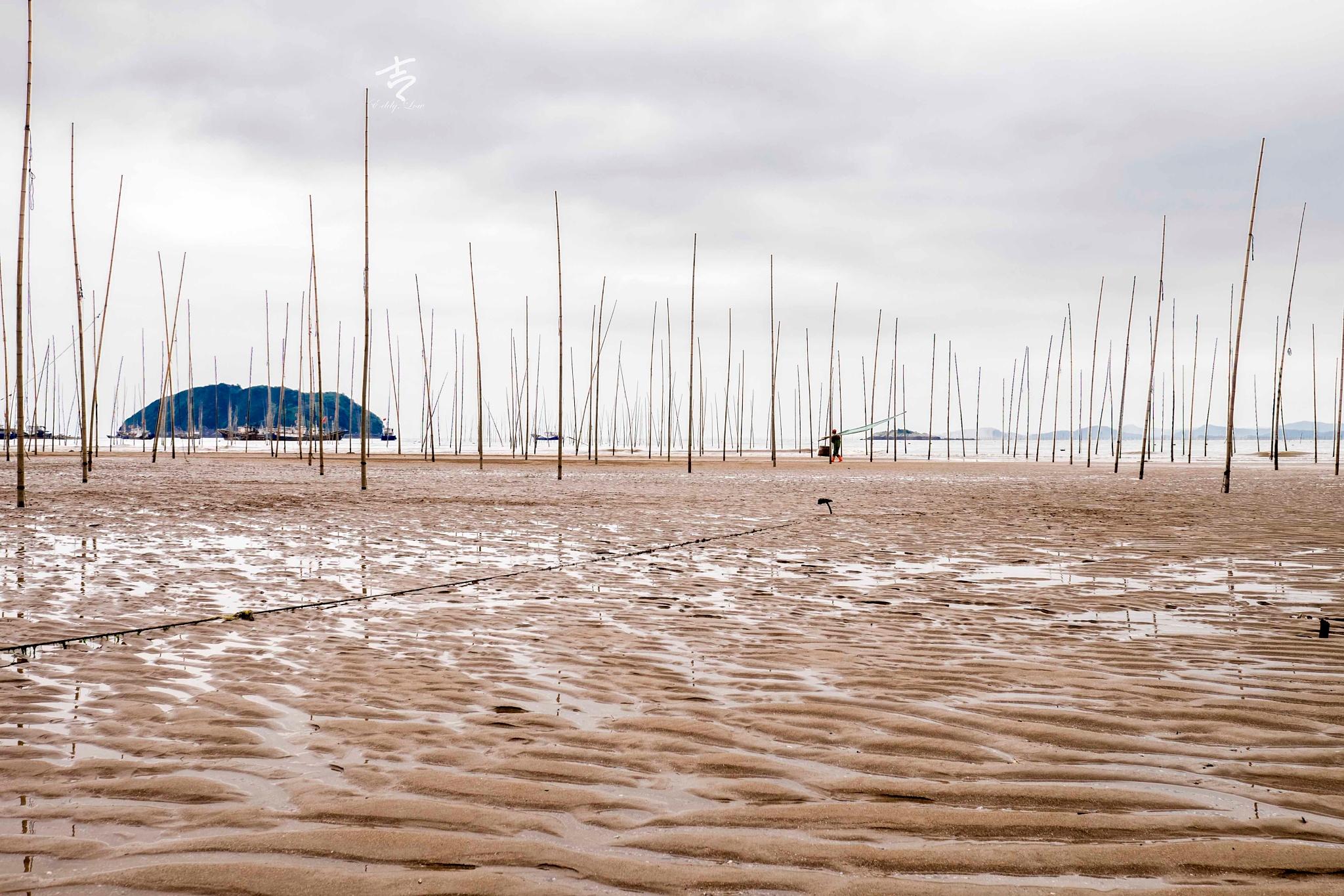 Pattern of the beach. by eddylowck