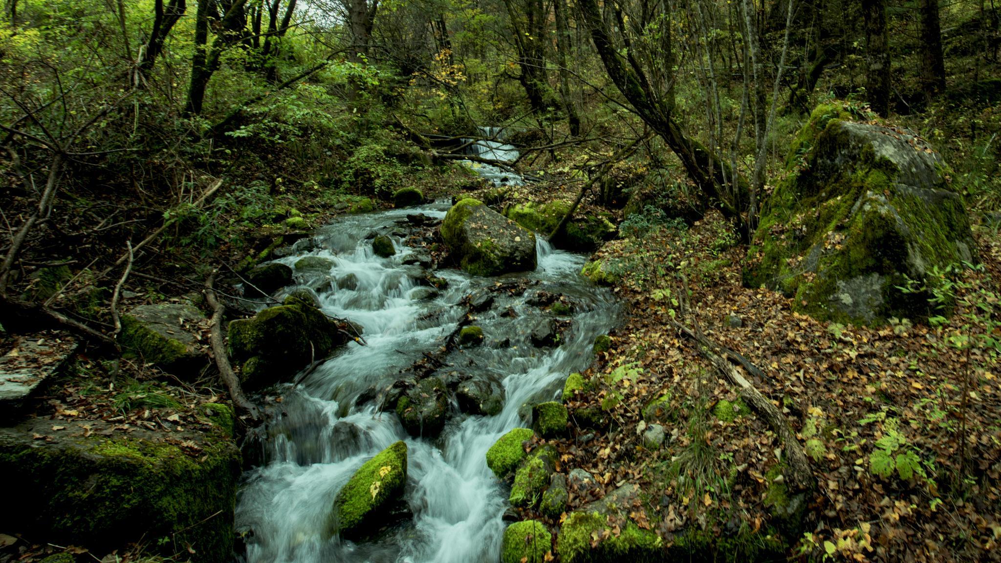 Time breeze thru like the streams. by eddylowck