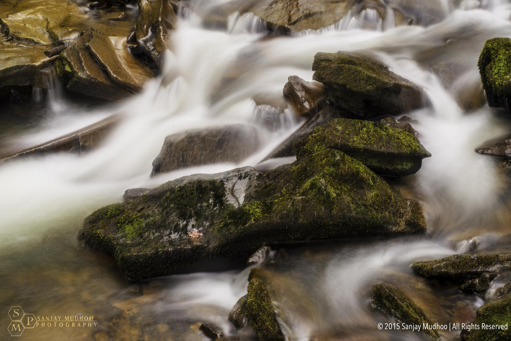 Stream by Sanjay Mudhoo
