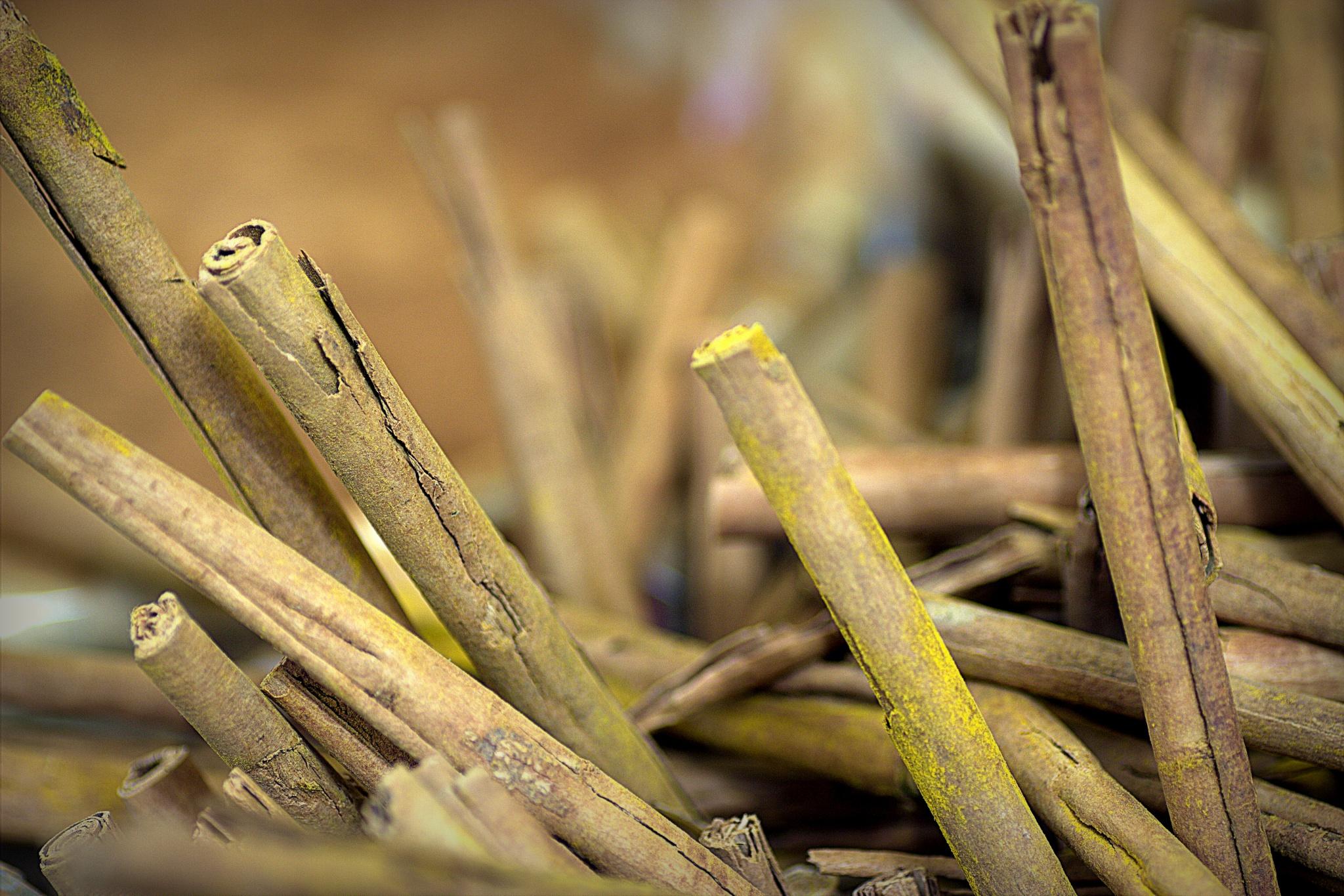 Market Ljubljana - cinnamon sticks .. by leopold.brzin