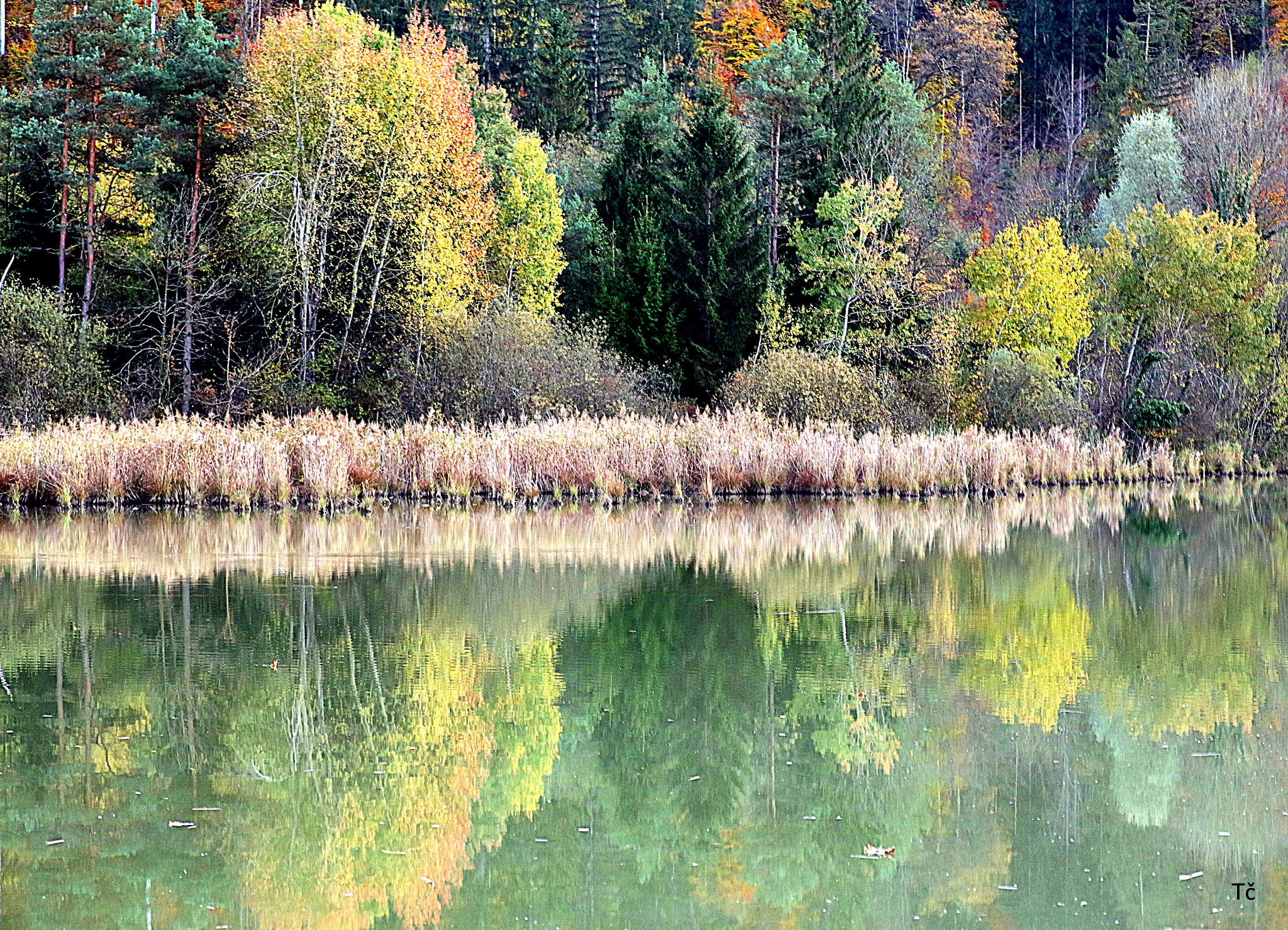 I lay down like a autumn leaf by leopold.brzin