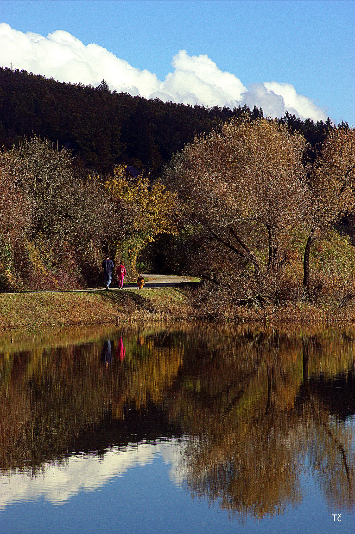 The colors of autumn at Cerknica Lake by leopold.brzin