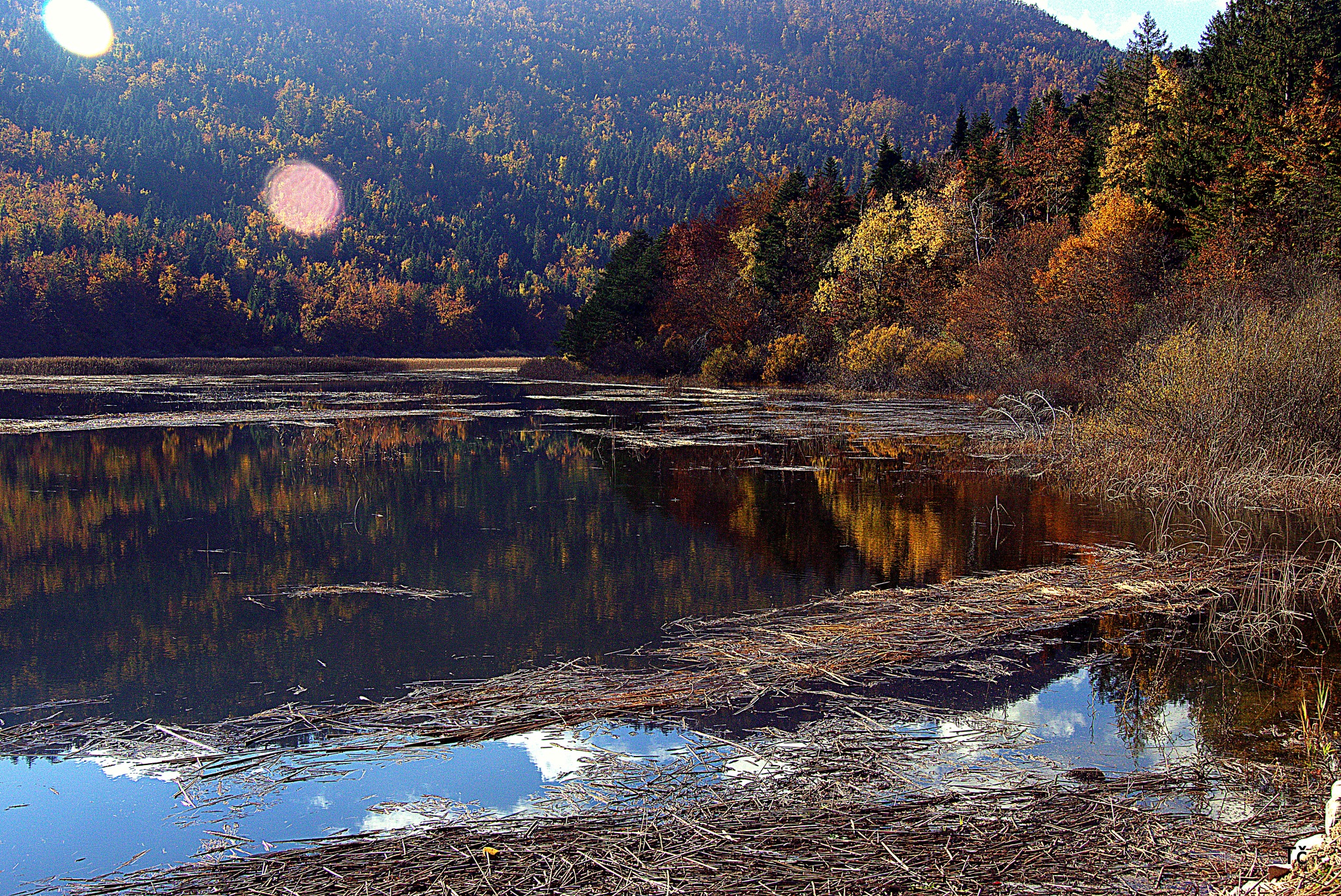 The colors of autumn at Cerknica Lake II by leopold.brzin