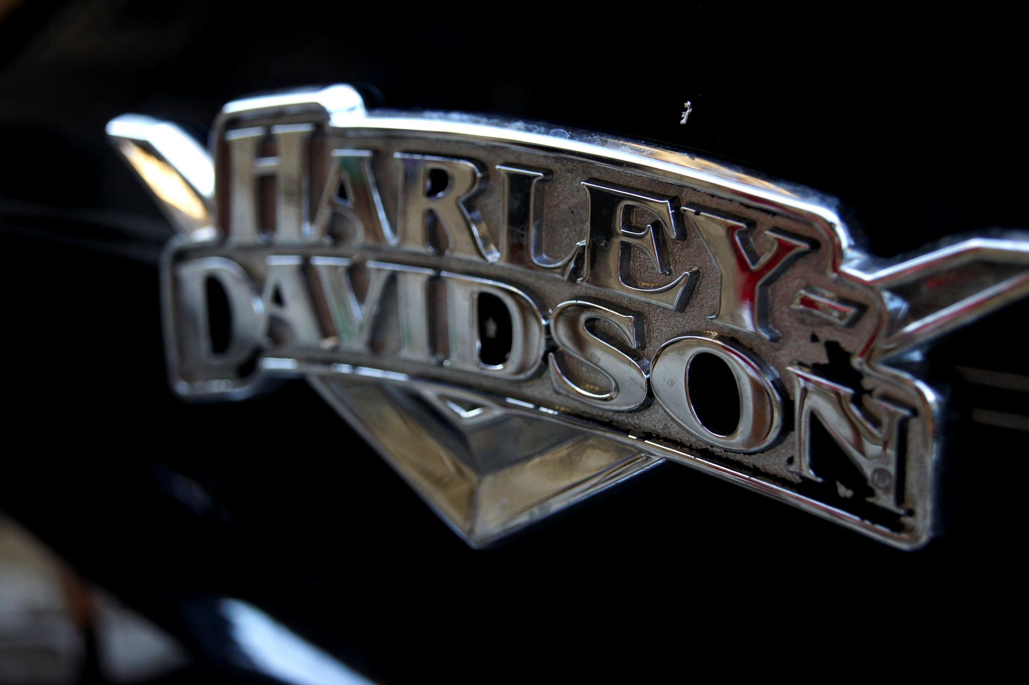 Harley Davidson by Fernando B