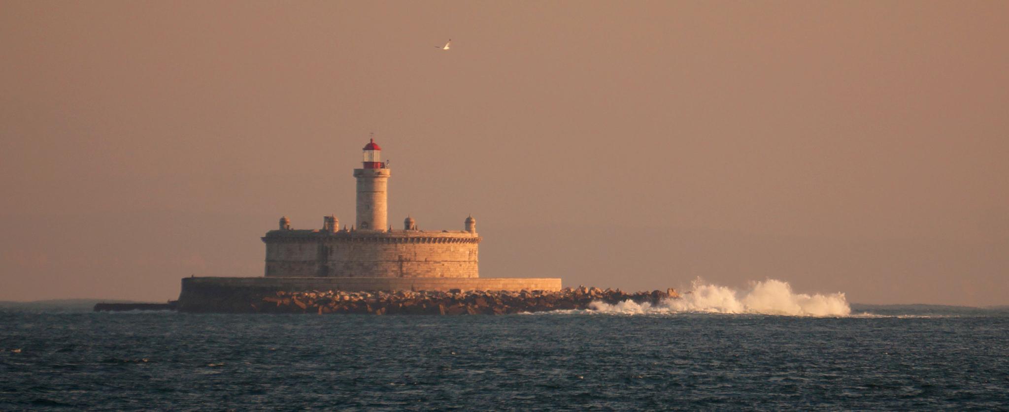 Bugio Lighthouse by Fernando B