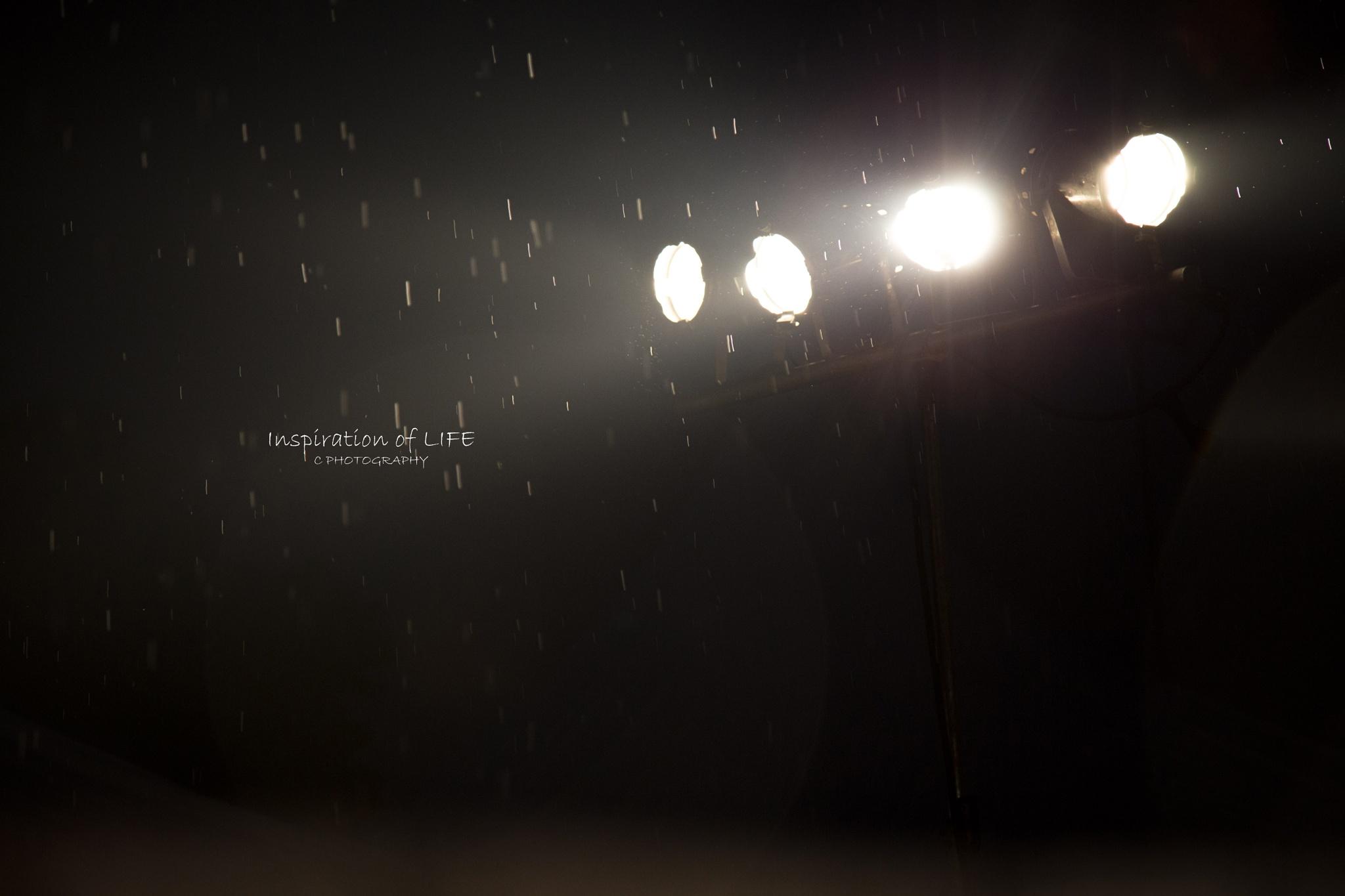 Rain_雨 by Lusee.K