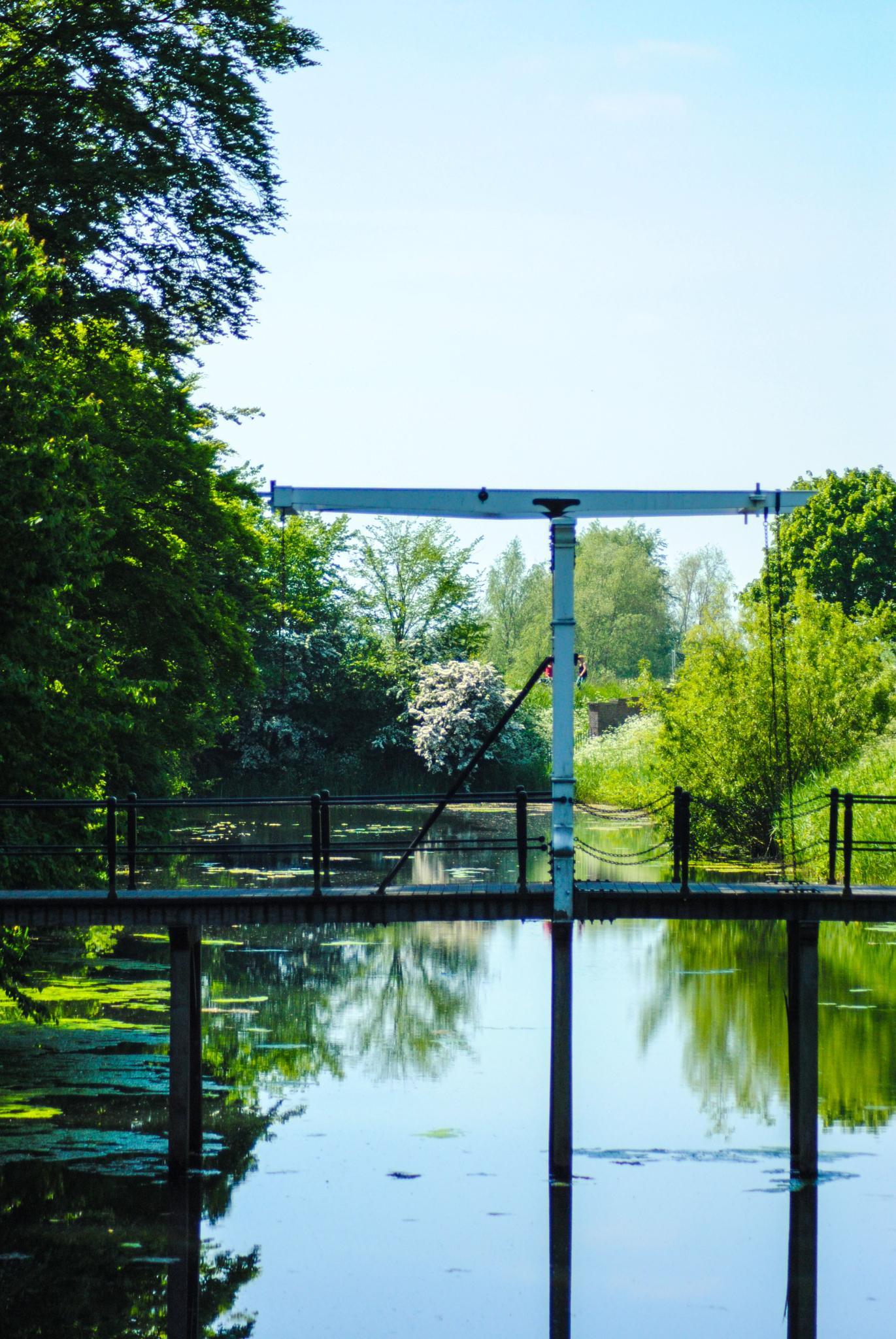 Bridge by Petra van Gend