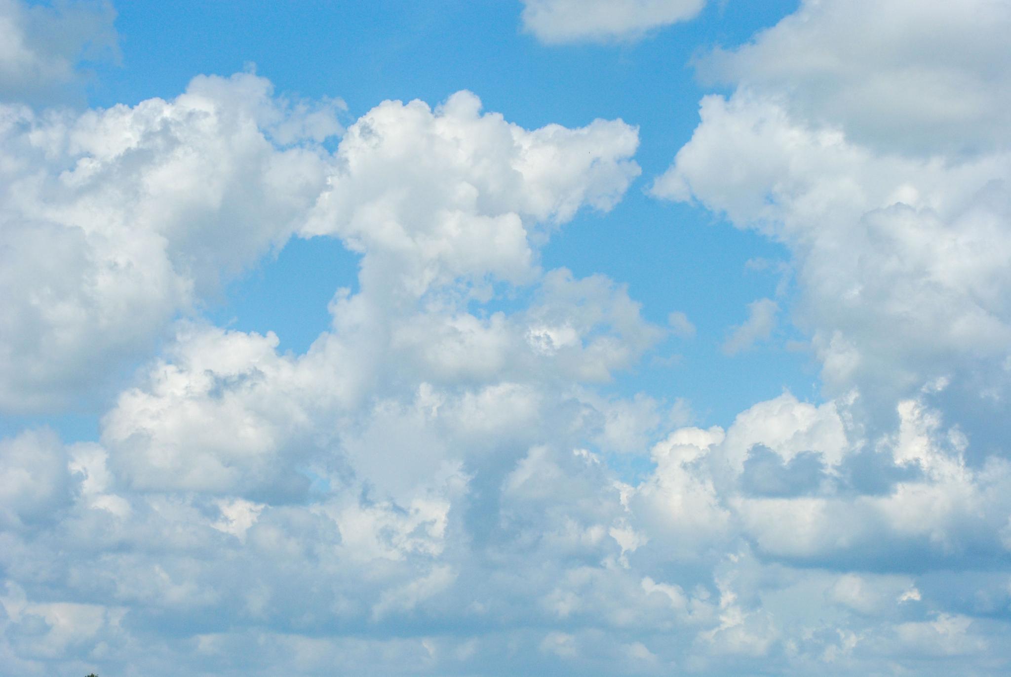 Nothing but blue skye by Petra van Gend