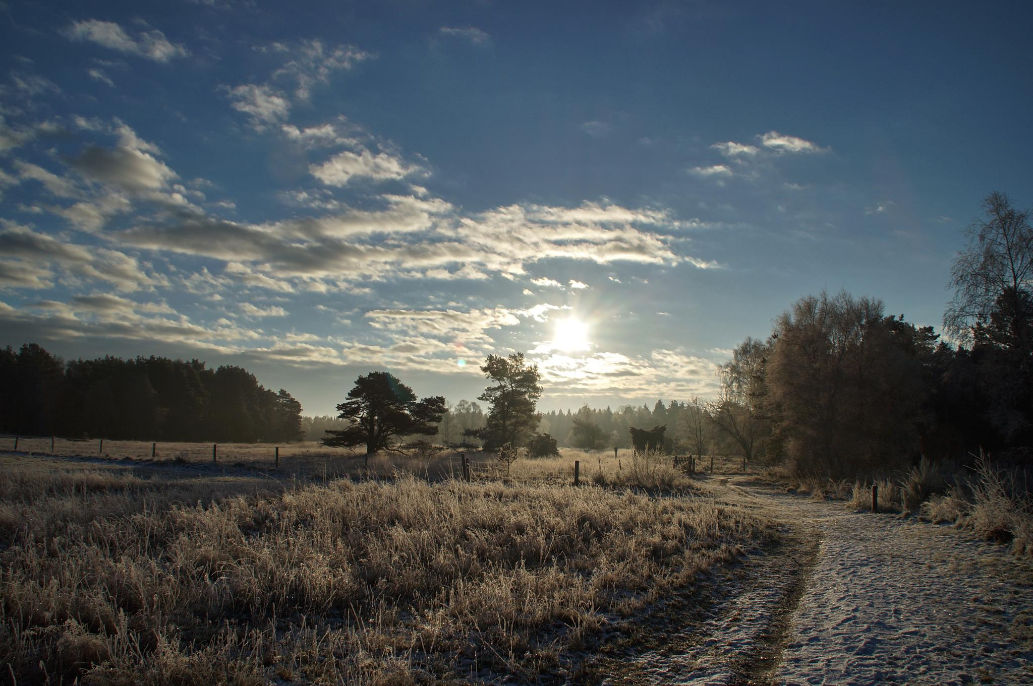 Right outside my door by MollerNielsen