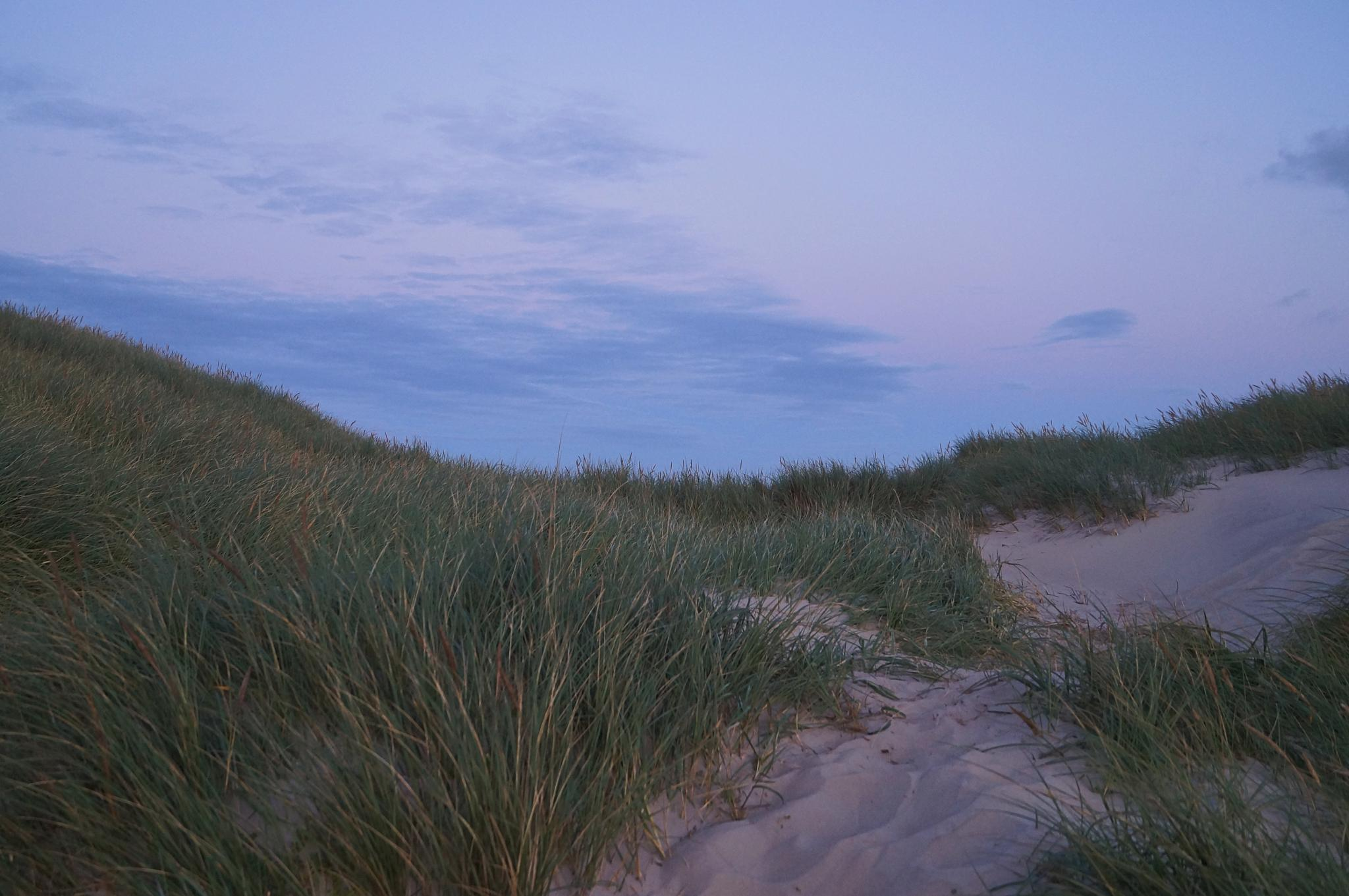 Evening at The North Sea by MollerNielsen