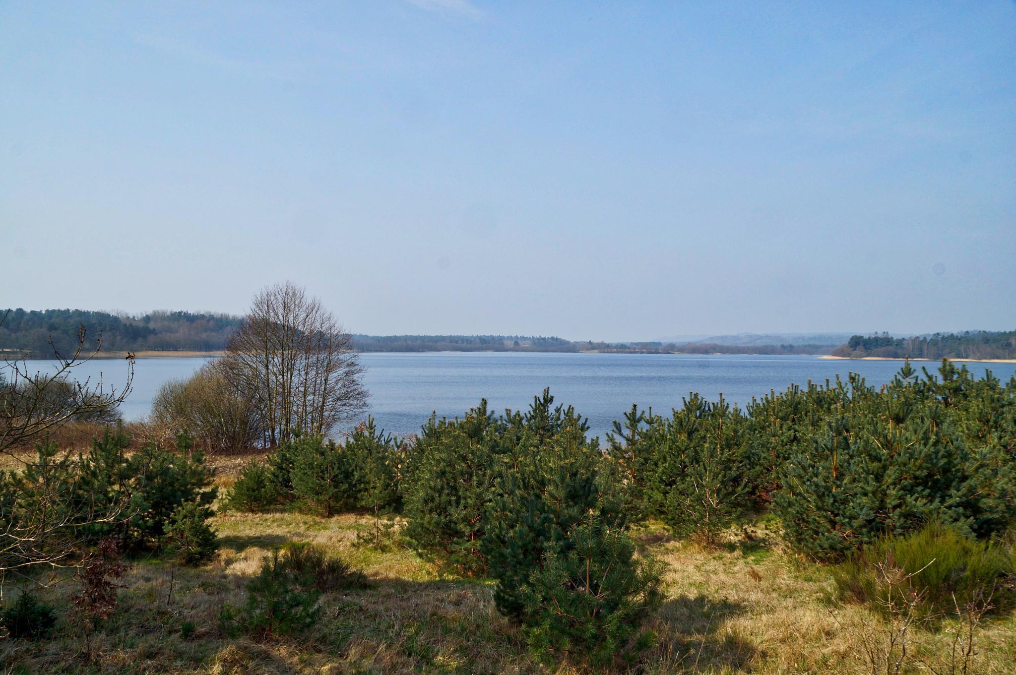 Gudensø from Klostervej by MollerNielsen