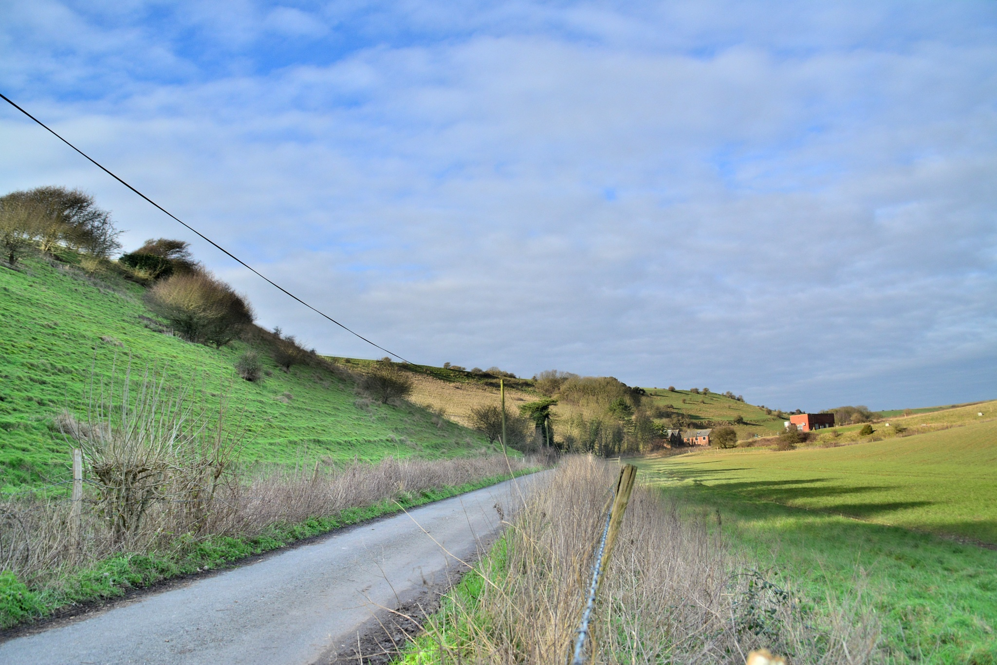 Country Lane by tim.wells.79
