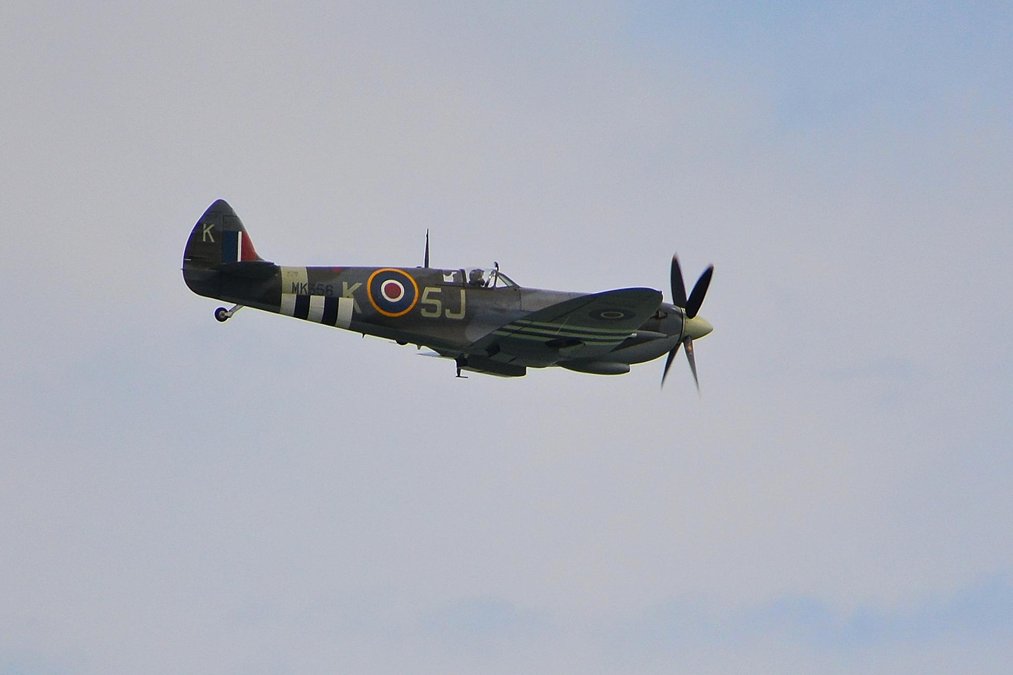 Spitfire by tim.wells.79
