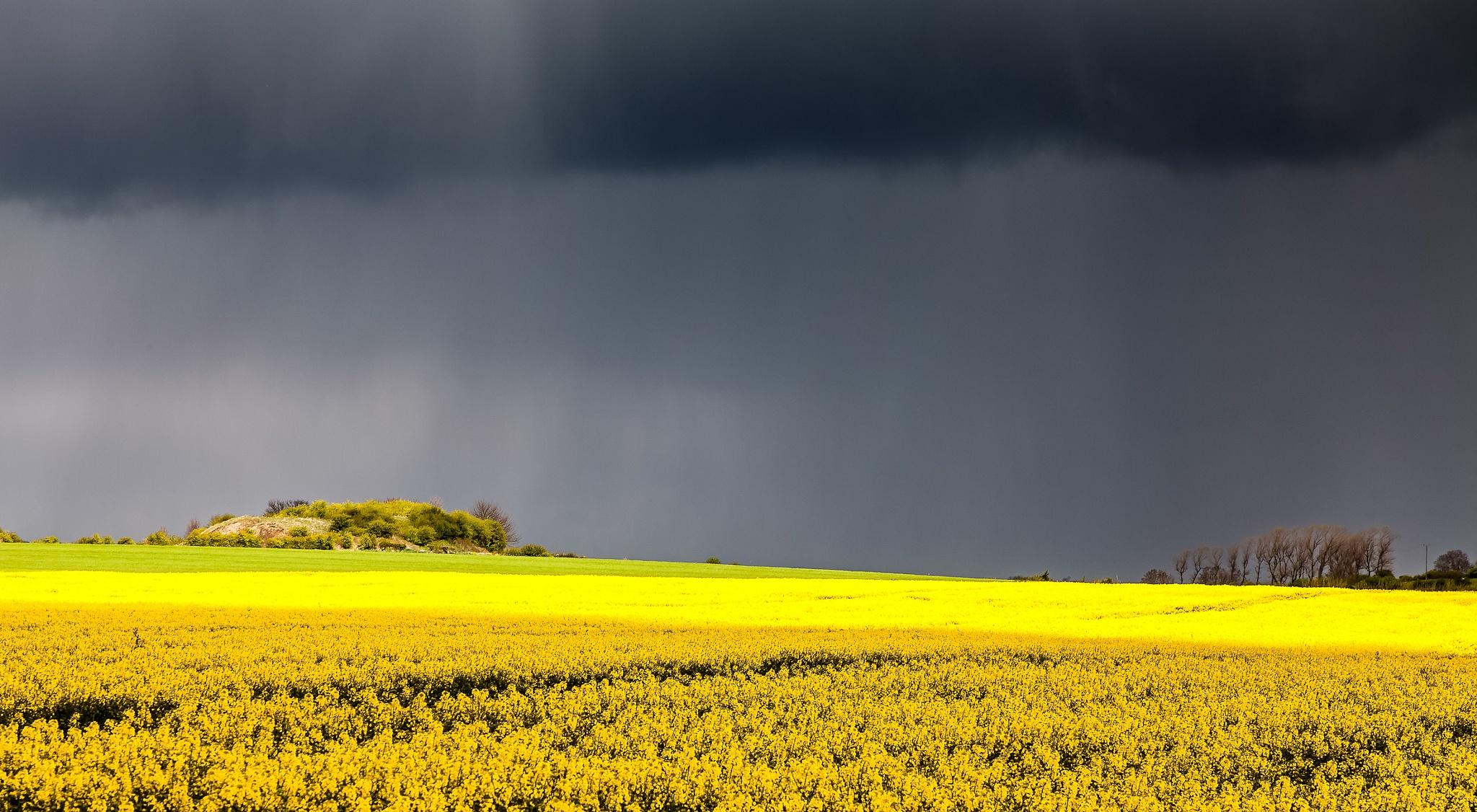 Looks like rain. by Bushnall Photography