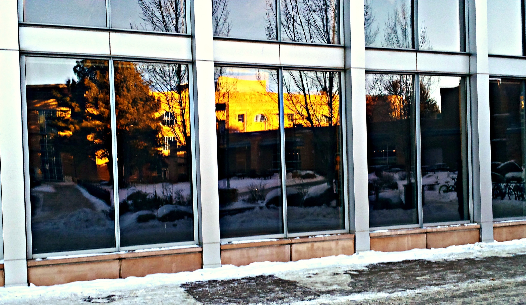 Winter Reflections by marta.givens