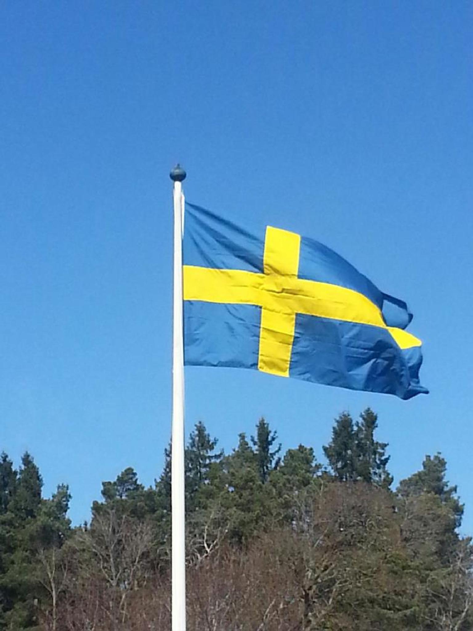 svenska flaggan by ingmarie.regner