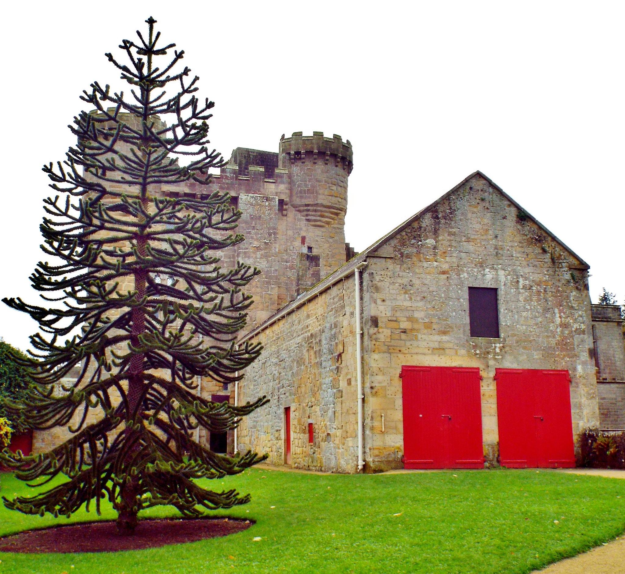 Belsay Castle by barbara.summers1