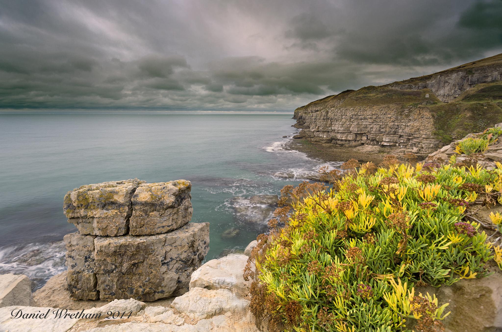 Coastal Garden by Daniel Wretham Photography