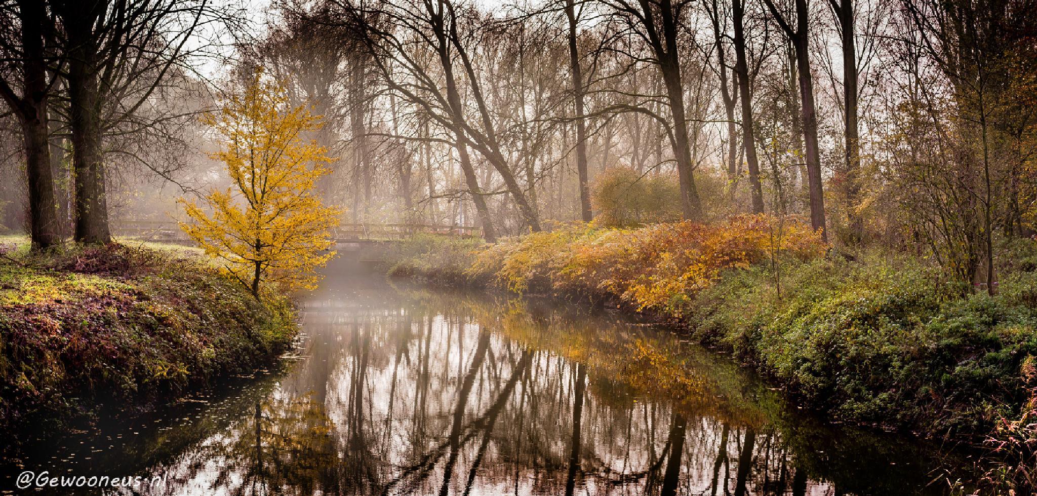 Dommel.. little river near Eindhoven by Gewooneus